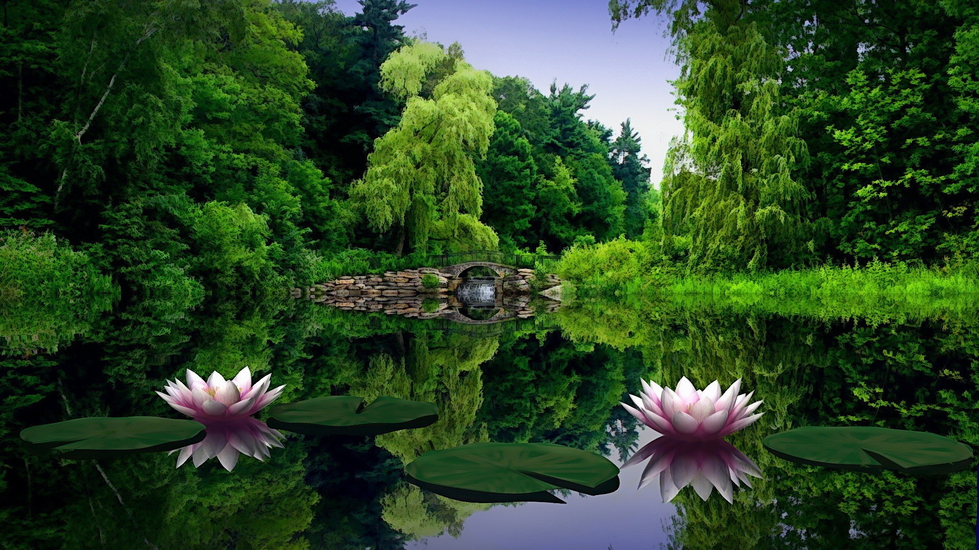 Flowers At River Wallpapers Picture Images Hd Views Download