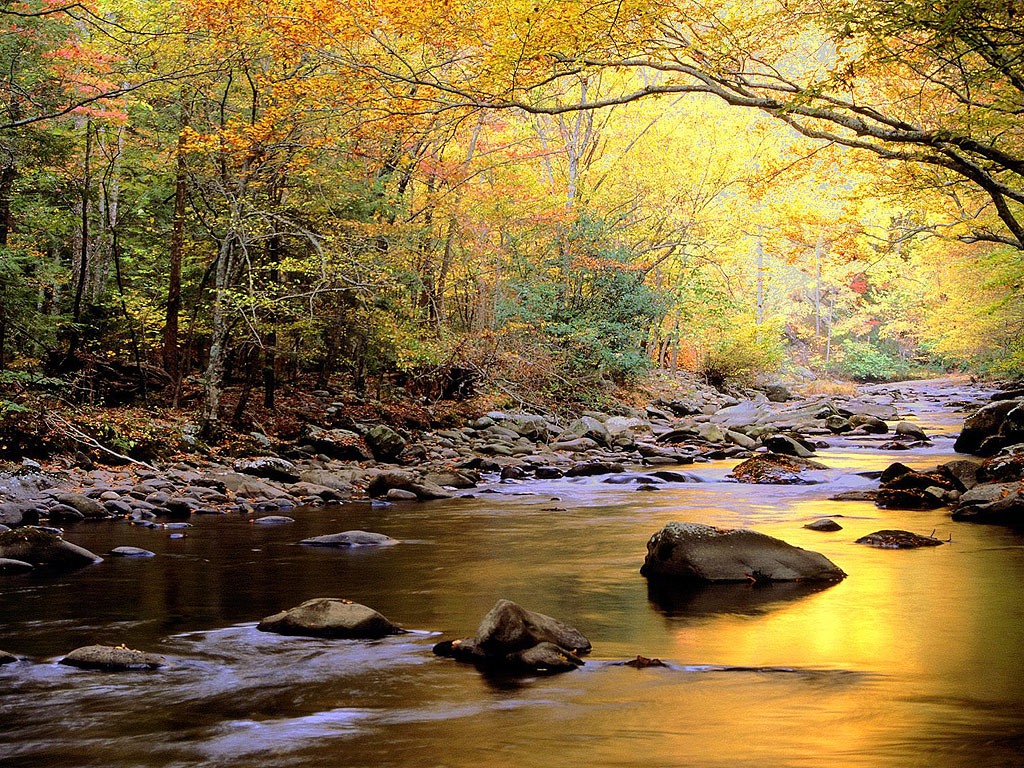 backgrounds river picture images photos hd wallpaper download