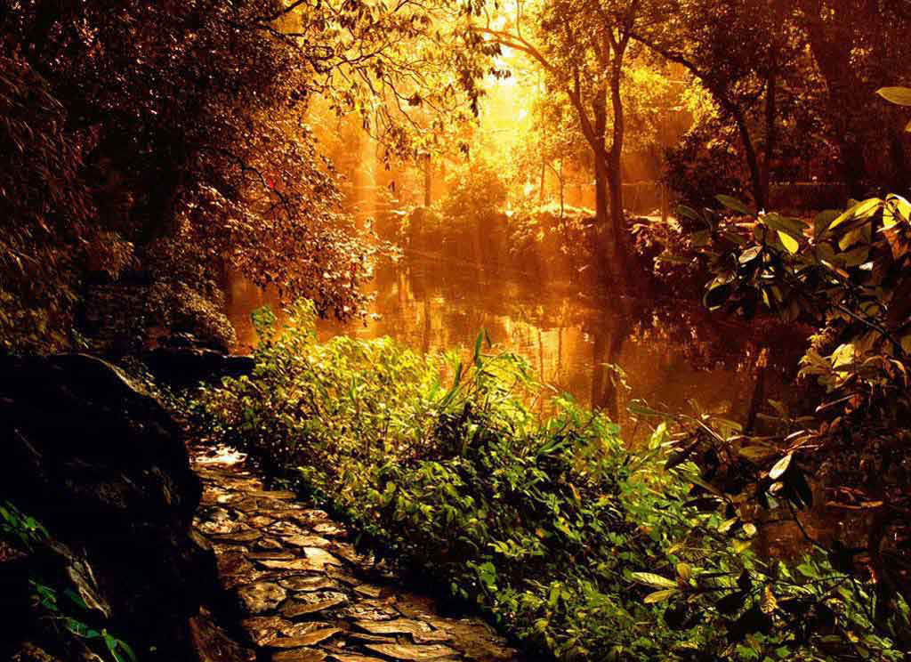 backgrounds river pictures images wallpaper download