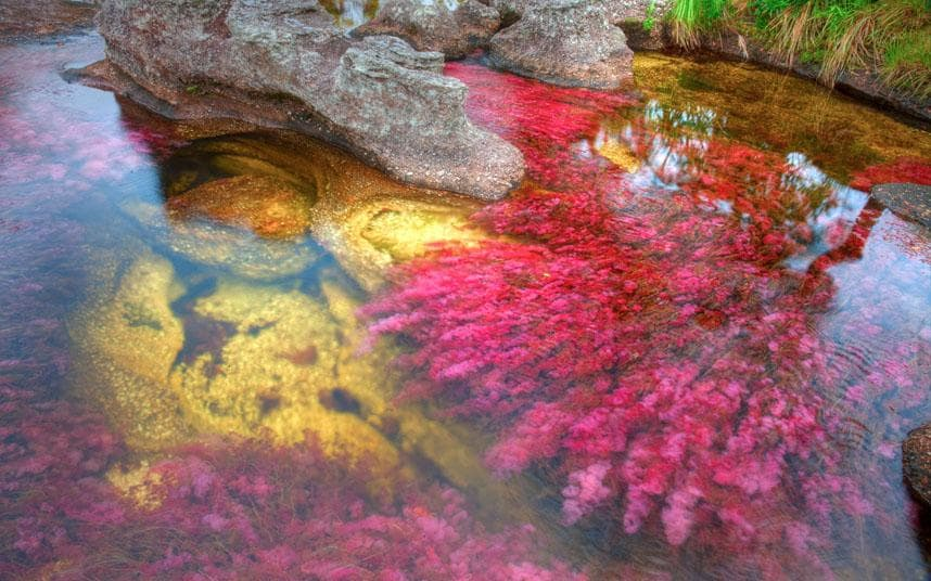 colorful rivers images algei picture photos and download