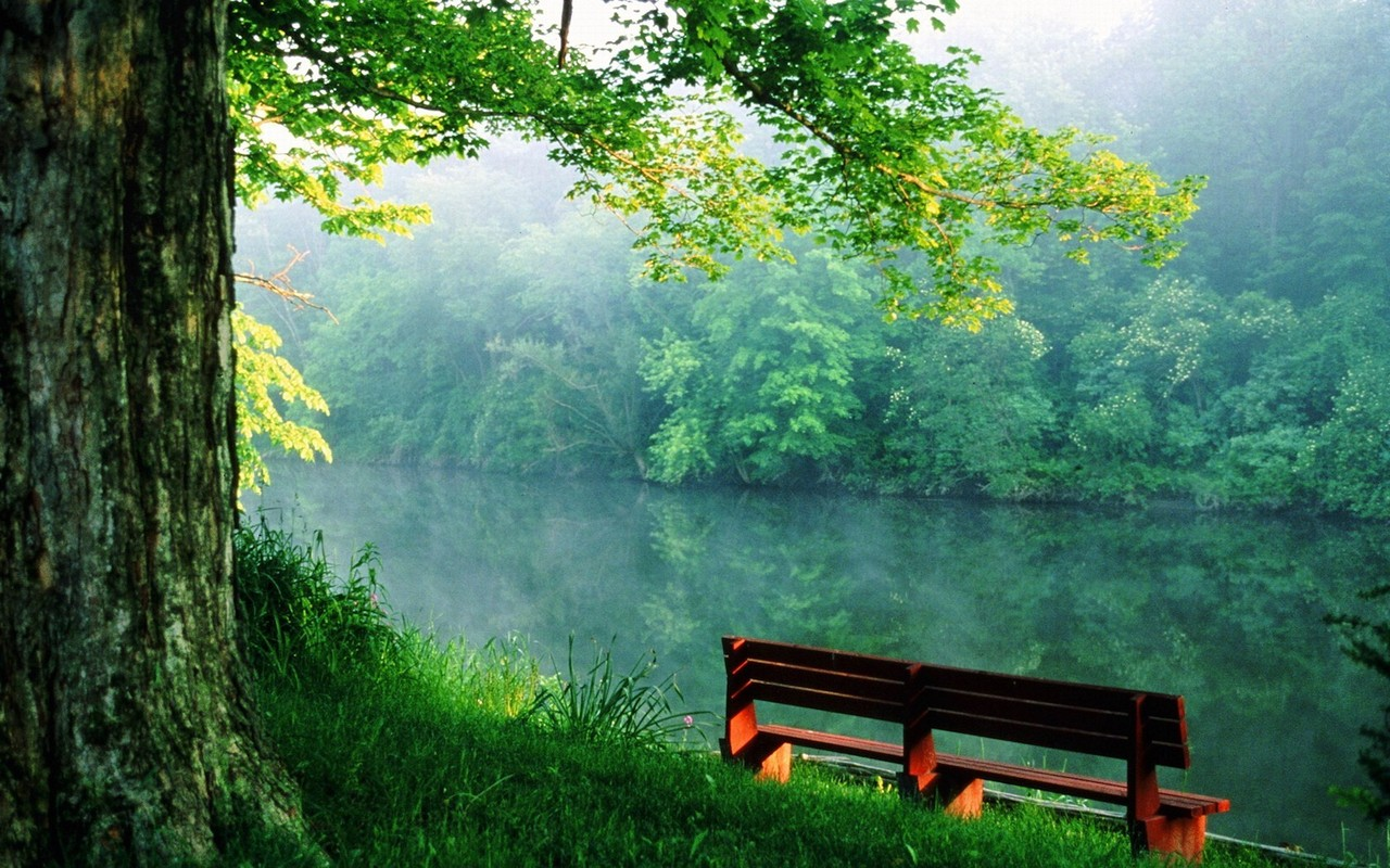 Nature River Banking Bench Wallpapers Desktop Views And Images