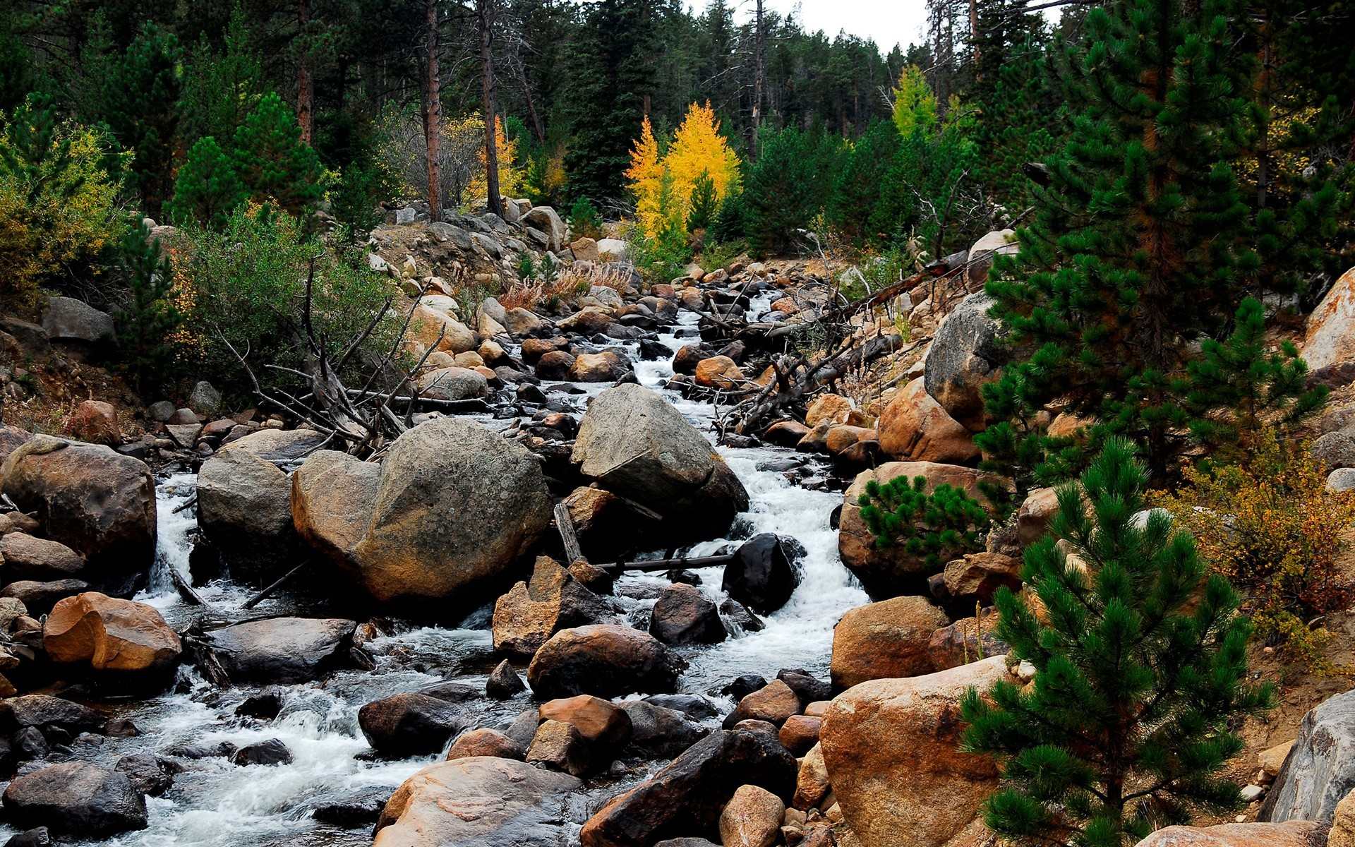 water flow download rocky mountain river wallpaper