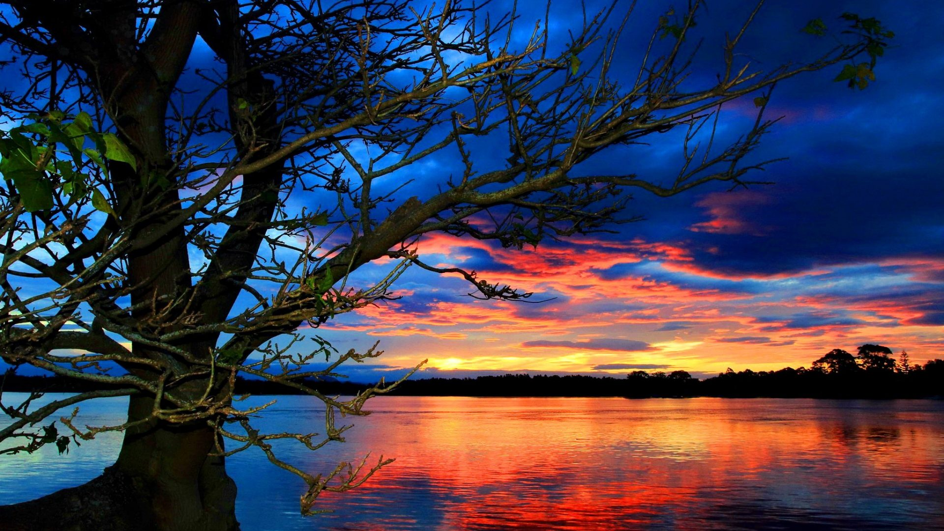 amazing sunset colorful wallpaper