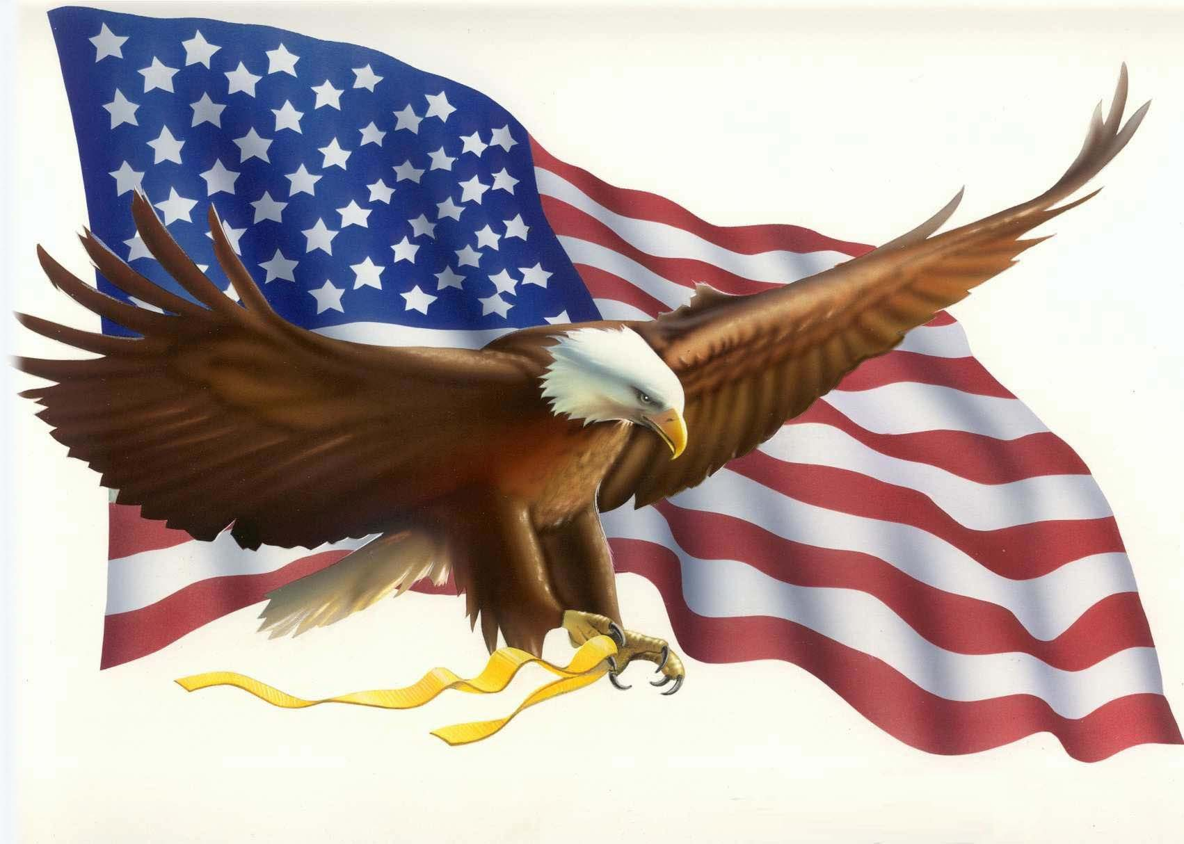 desktop picture american eagle with flag