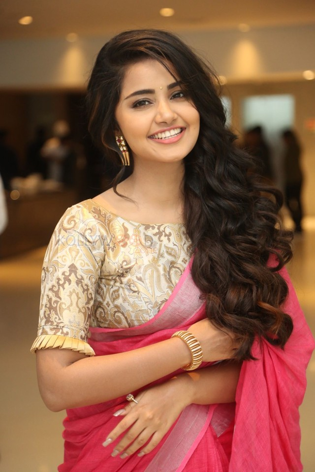 actress anupama parameswaran cute looking saree picture