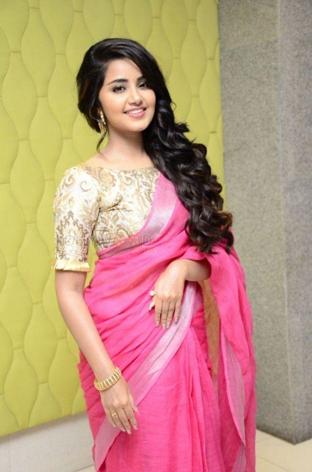 stunning anupama parameshwaran pink saree wallpapers