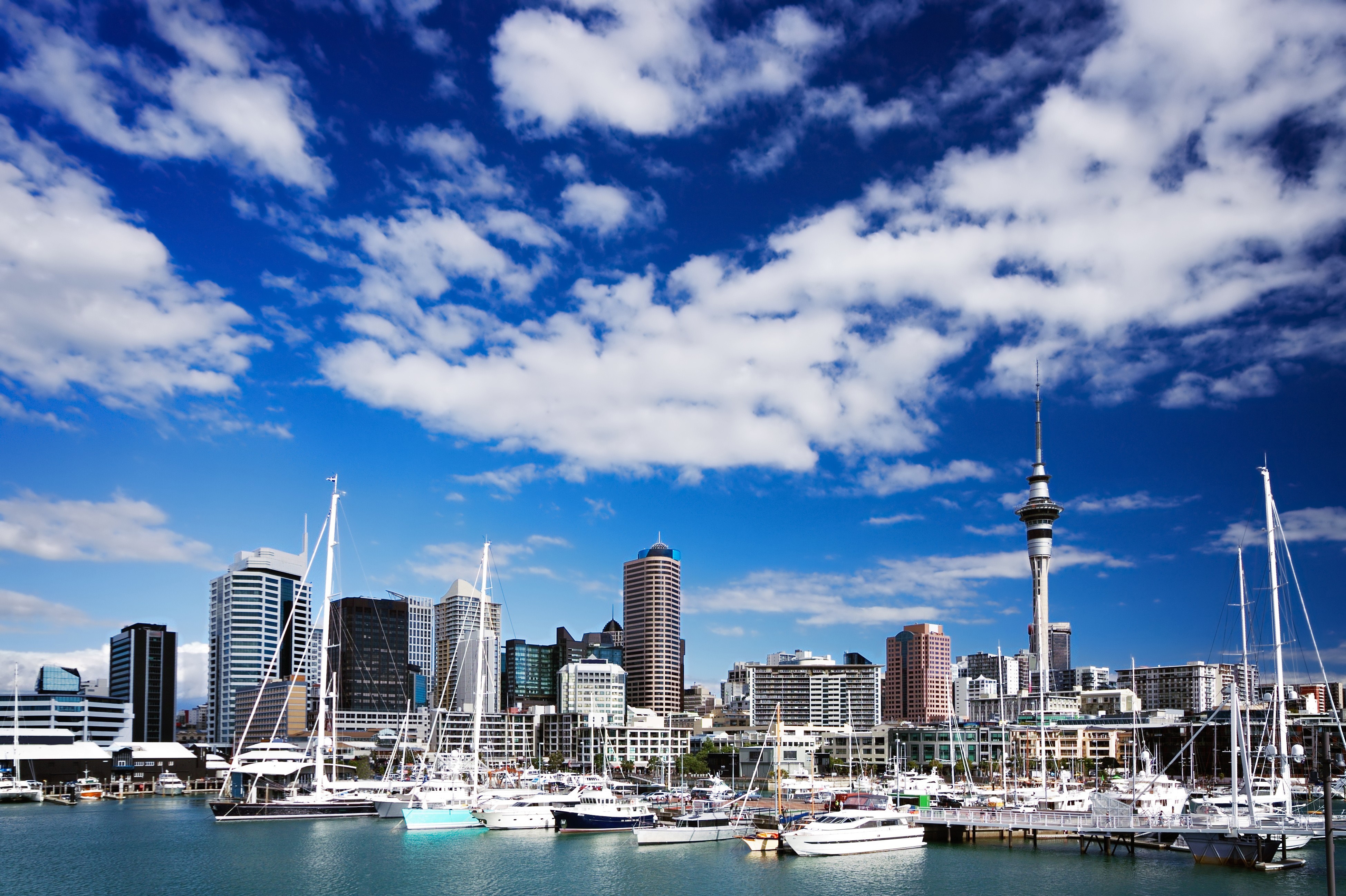 free beautiful piece auckland mobile desktop photos