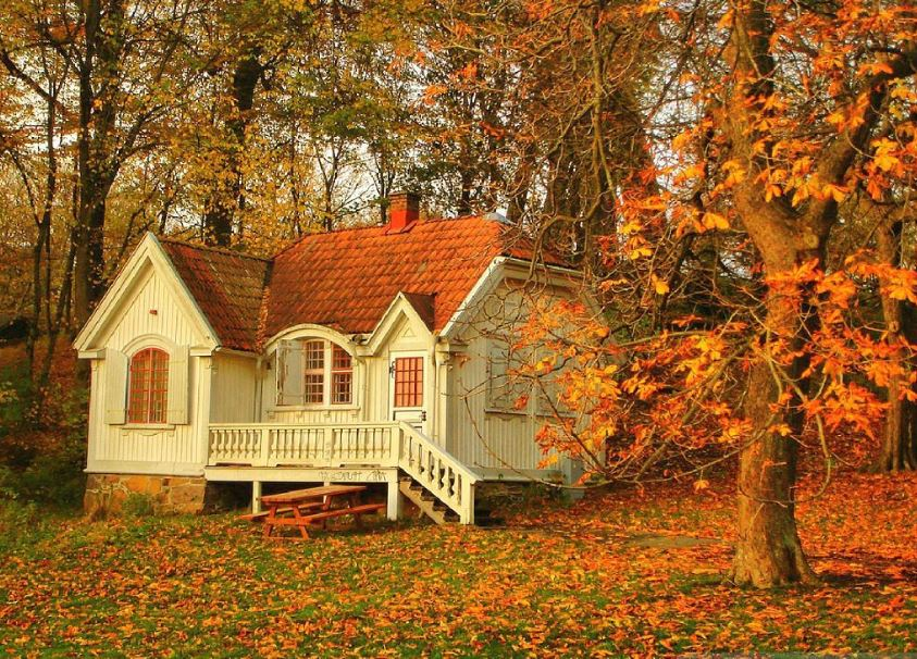Beautiful Autumn Home Wallpapers For Mobile Screen Picture