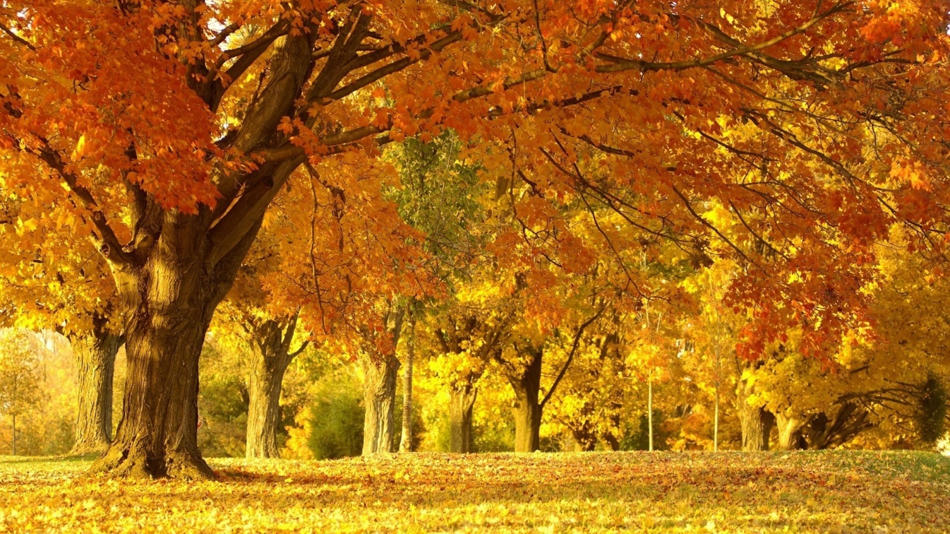 best hd autumn landscape wallpapers