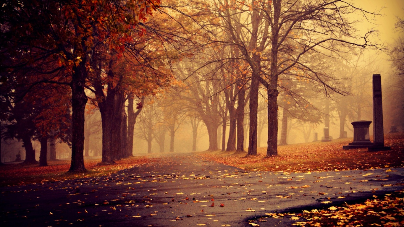 Fall Snow In The Morining Autumn Pictures Free Download