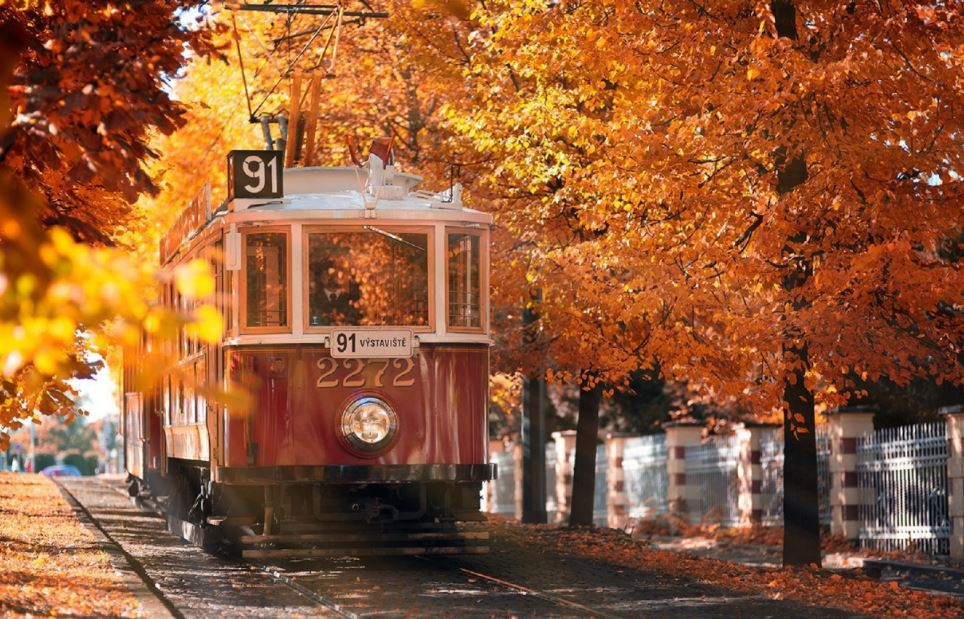 happy train journey in autumn tumblr wallpapers hd image