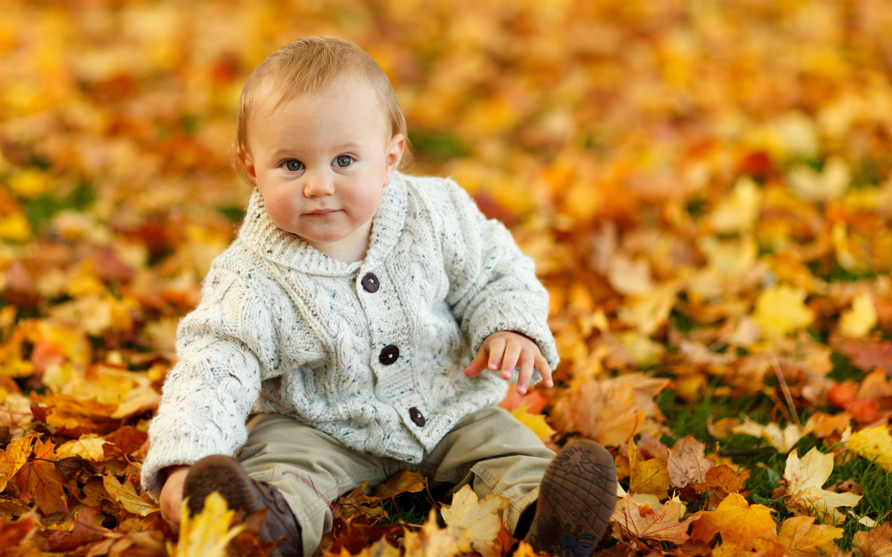 Lovely And Cute Baby Enjoy The Autumn Leaves Wallpaper