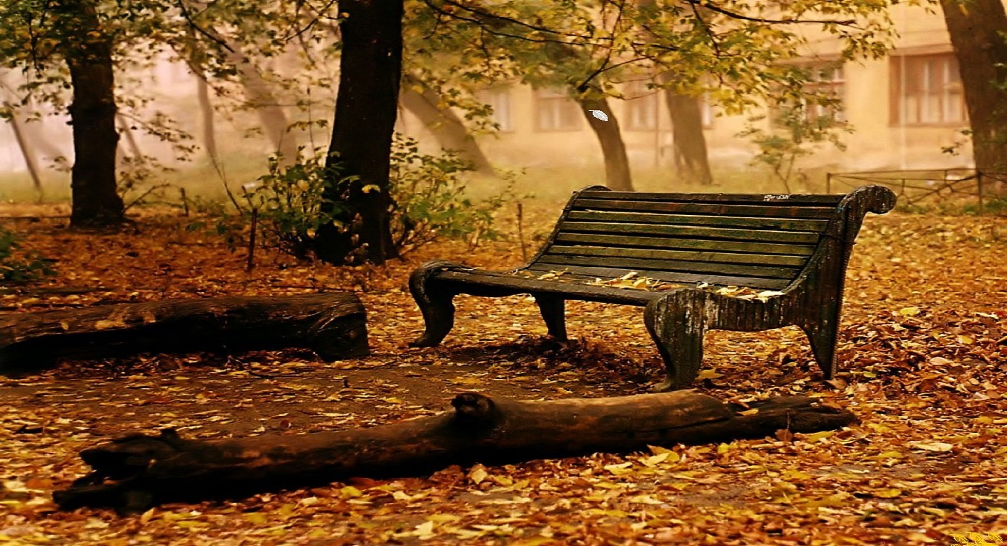 Rest Of Autumn Wallpaper Image Free Download