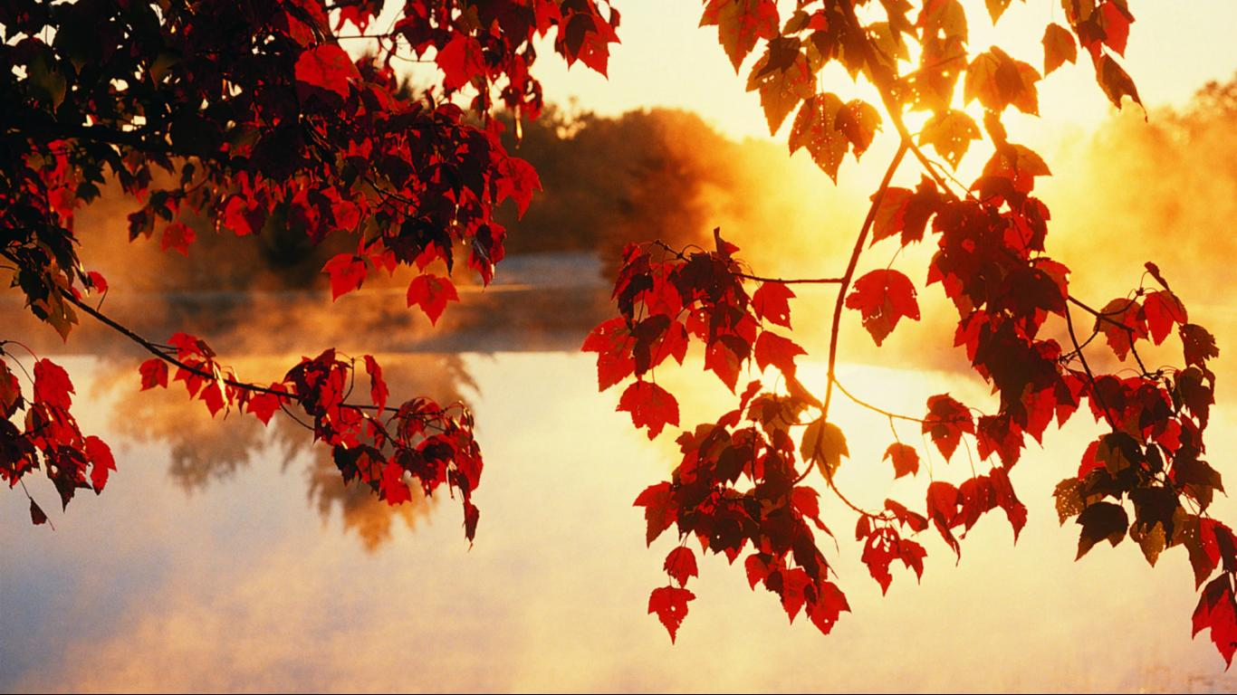 Sun Set Gives Autumn Beautiful Hd Download Wallpapers