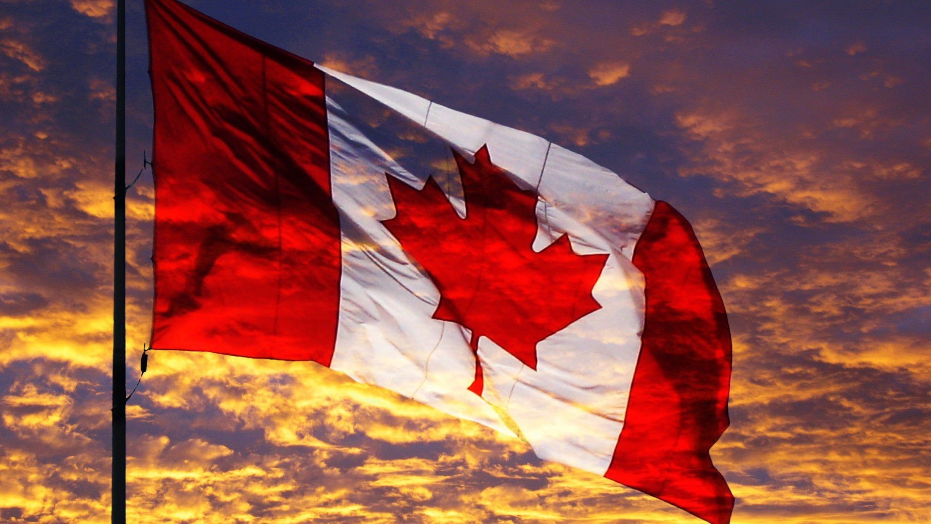 waving canadian flag images