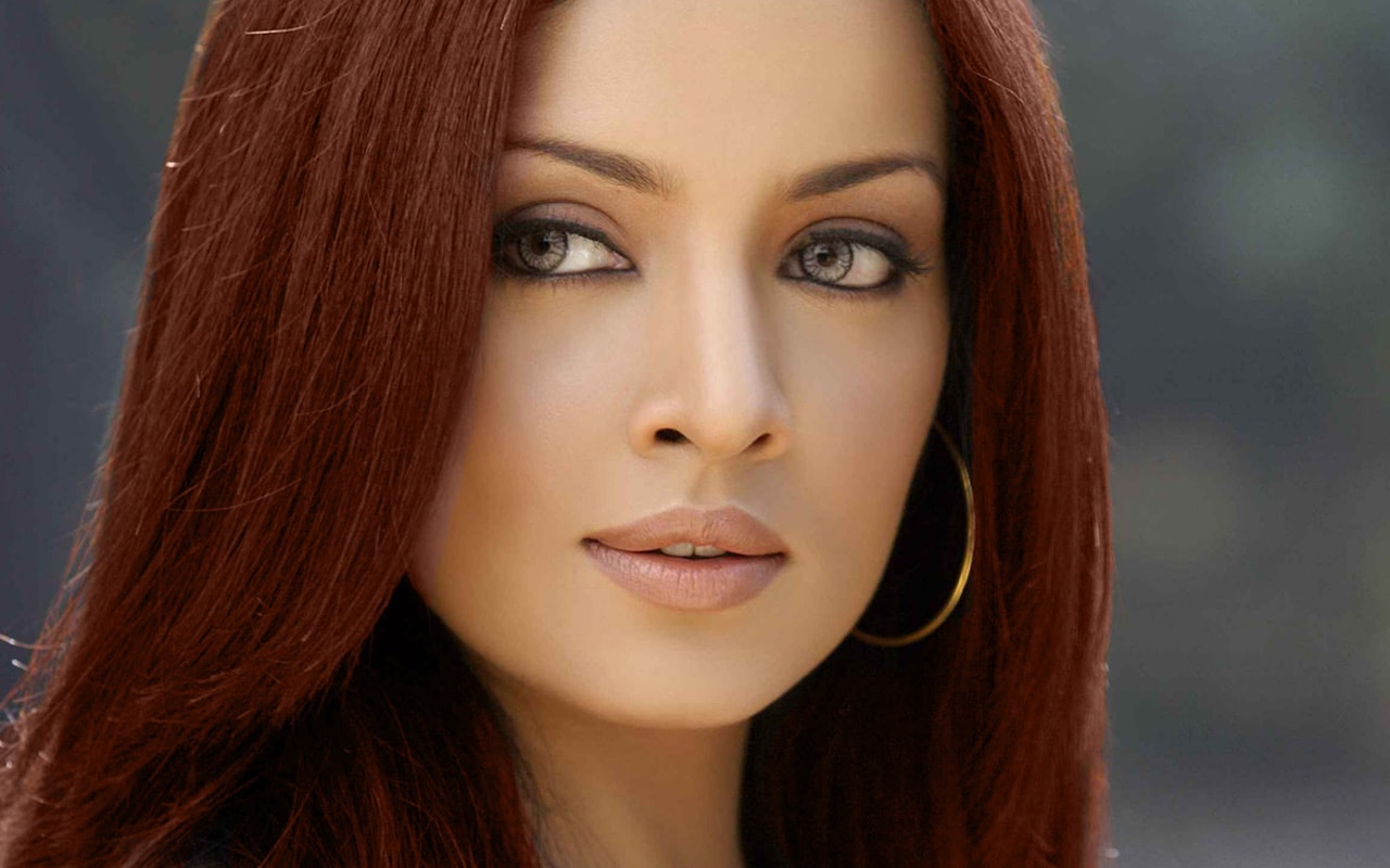 amazing celina jaitly beautiful look desktop mobile hd background free wallpaper