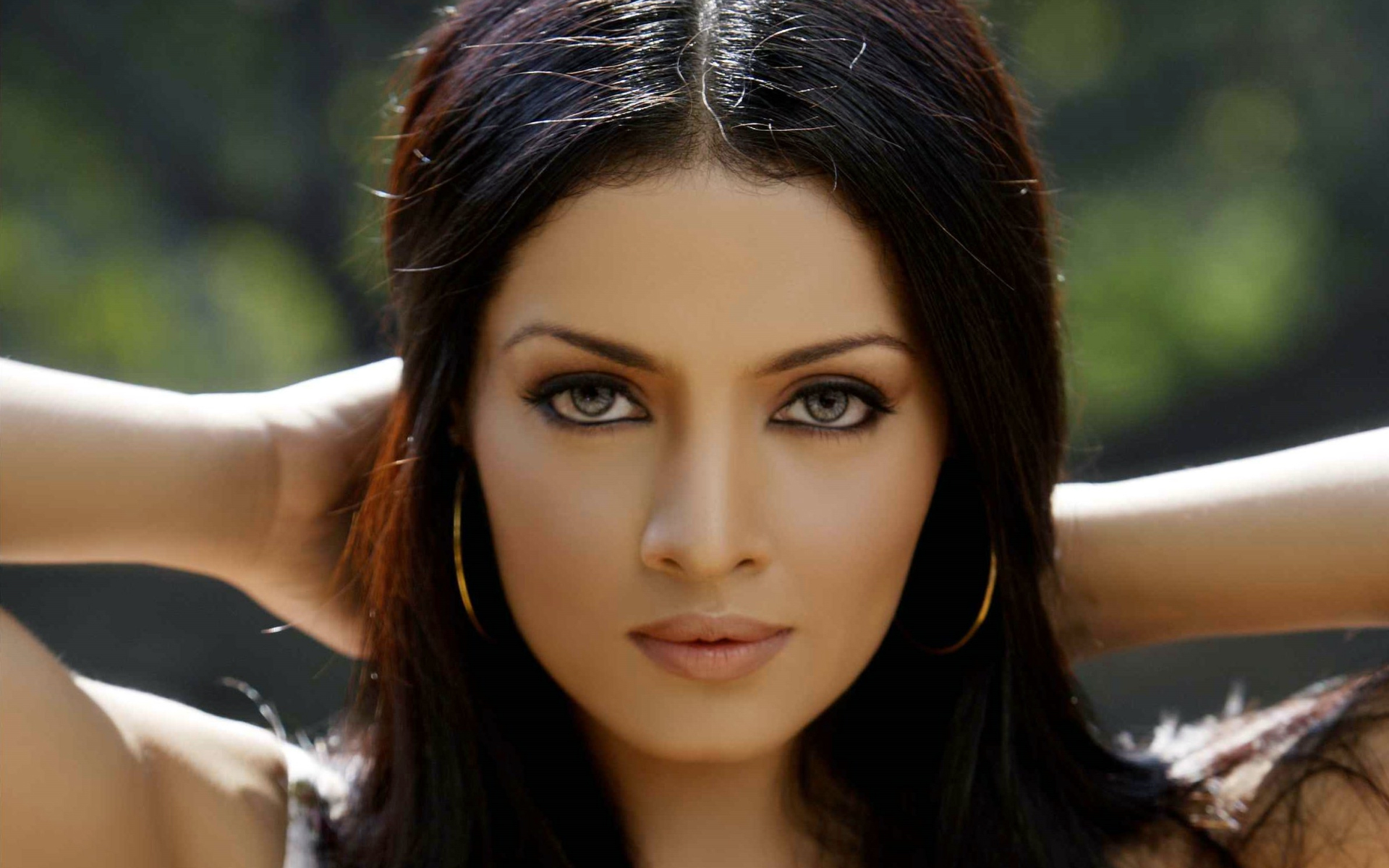 Beautiful Celina Jaitly Eye Look Free Desktop Mobile Hd Background Images