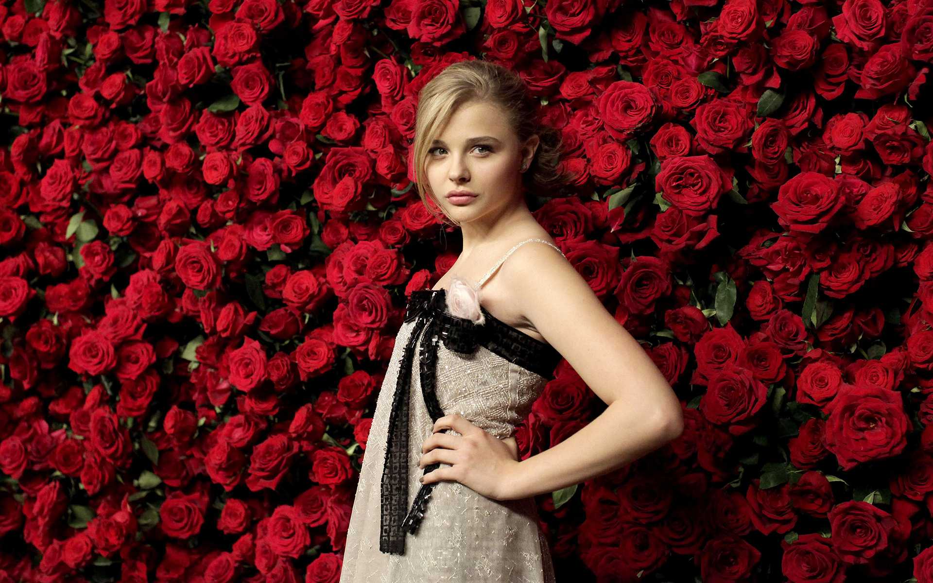 Stunning Download Chloe Grace Moretz Picture