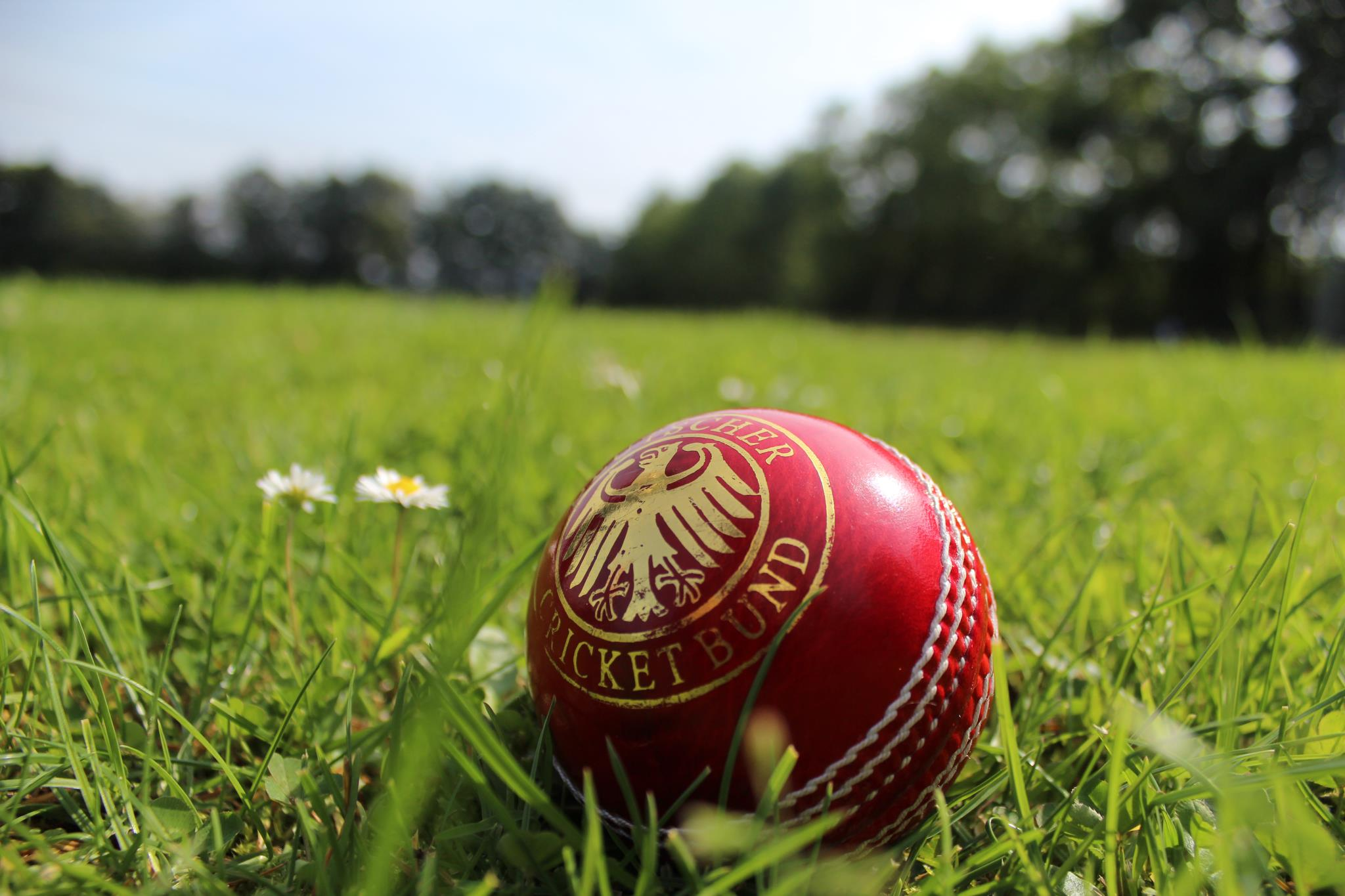 cricket ball wallpapers for mobile free download