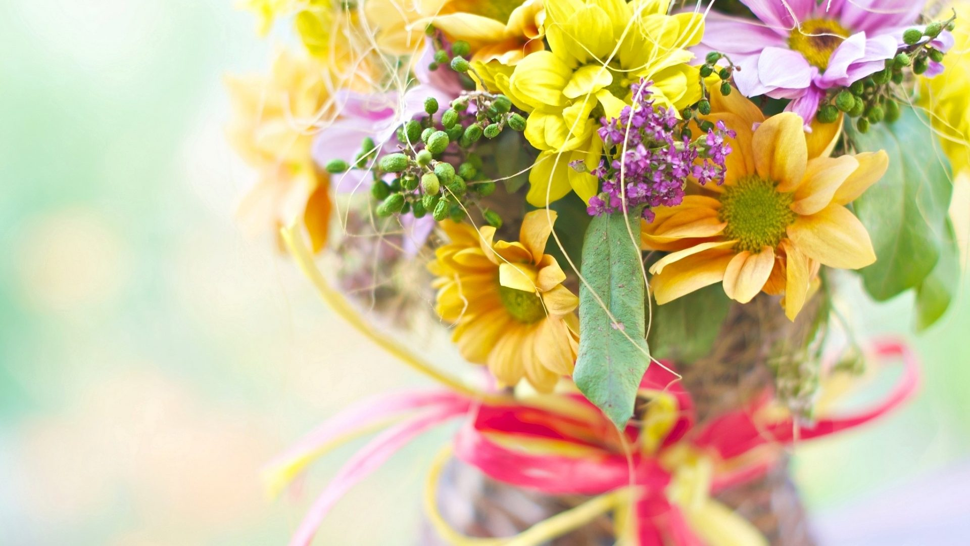 bouquet daisy colorful petals beautiful flower hd wallpaper widescreen