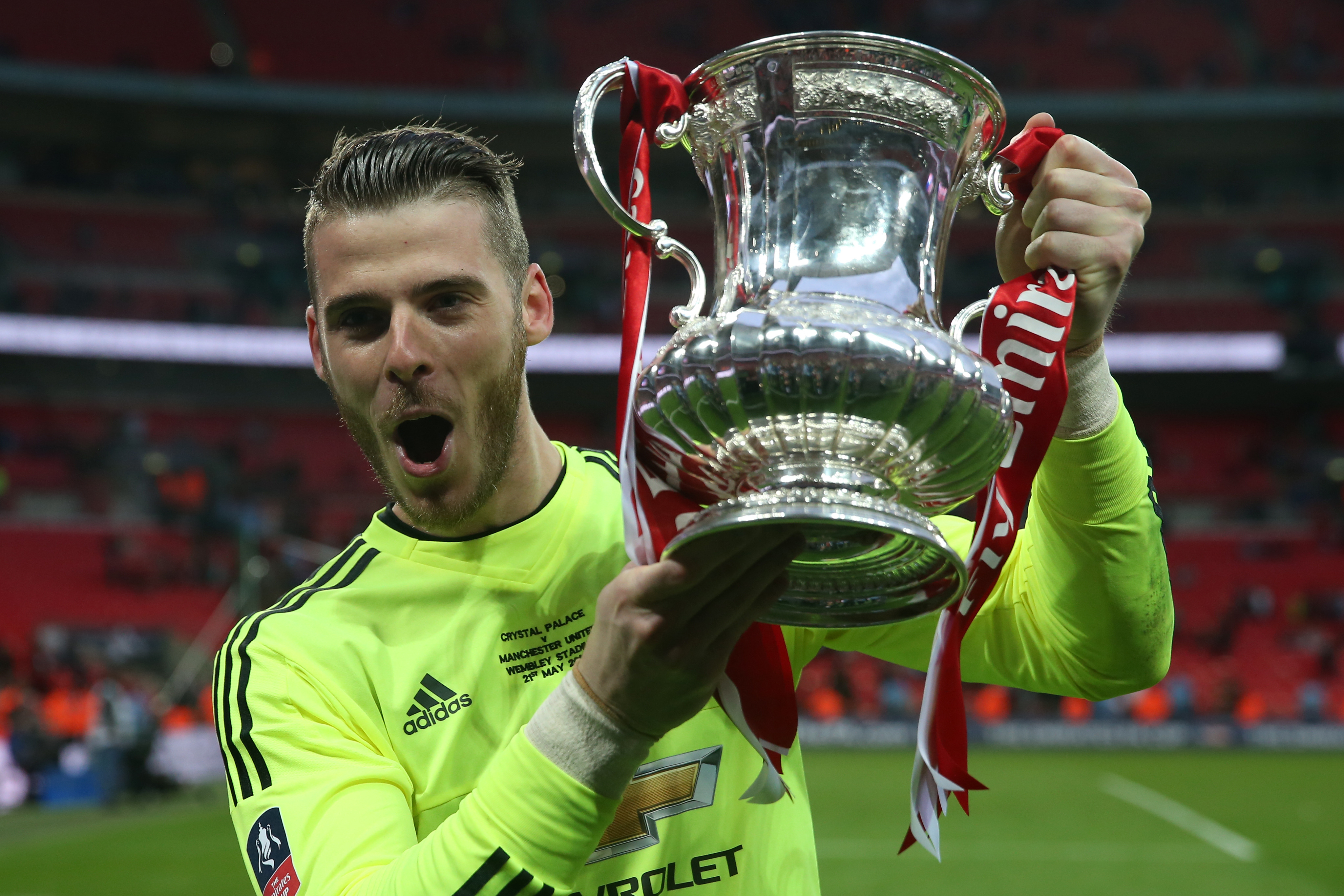 fantastic david de gea mobile free hd desktop cup pictures