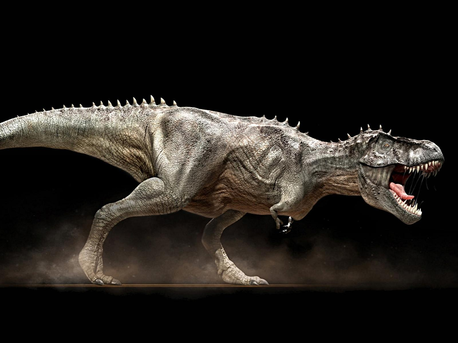 dinnosaur widescreen high definition pc backgrounds wallpaper
