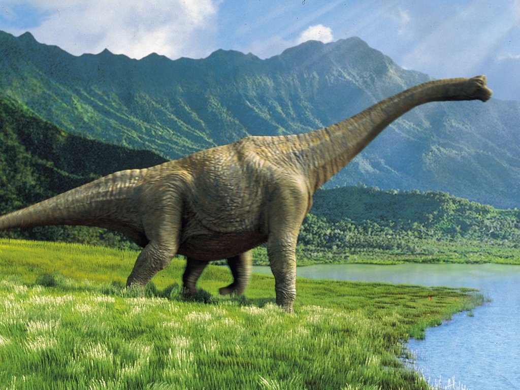 dinosaur wild animal high quality wallpaper