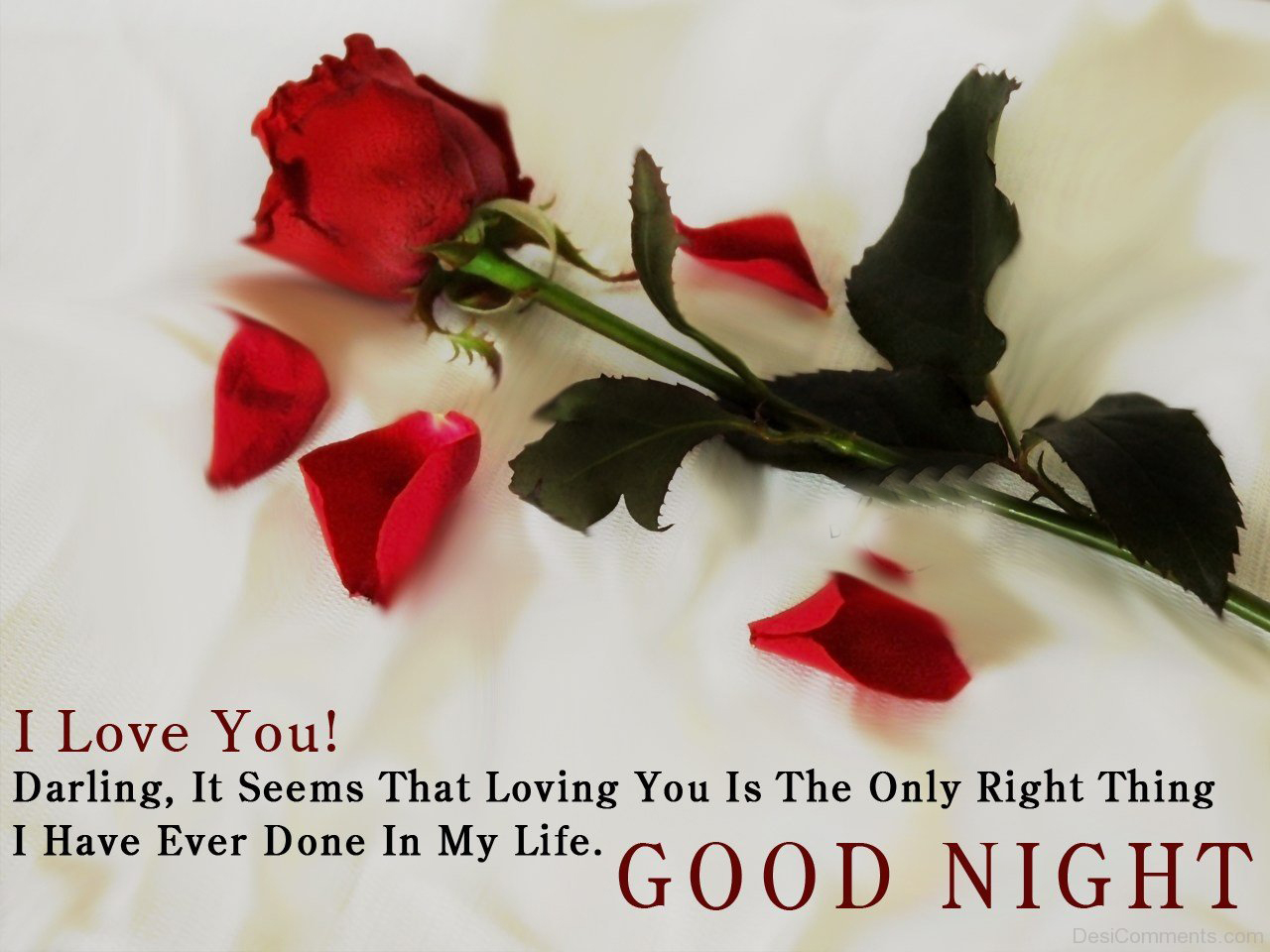 Lovers Saying Good Night Quotes Free Download