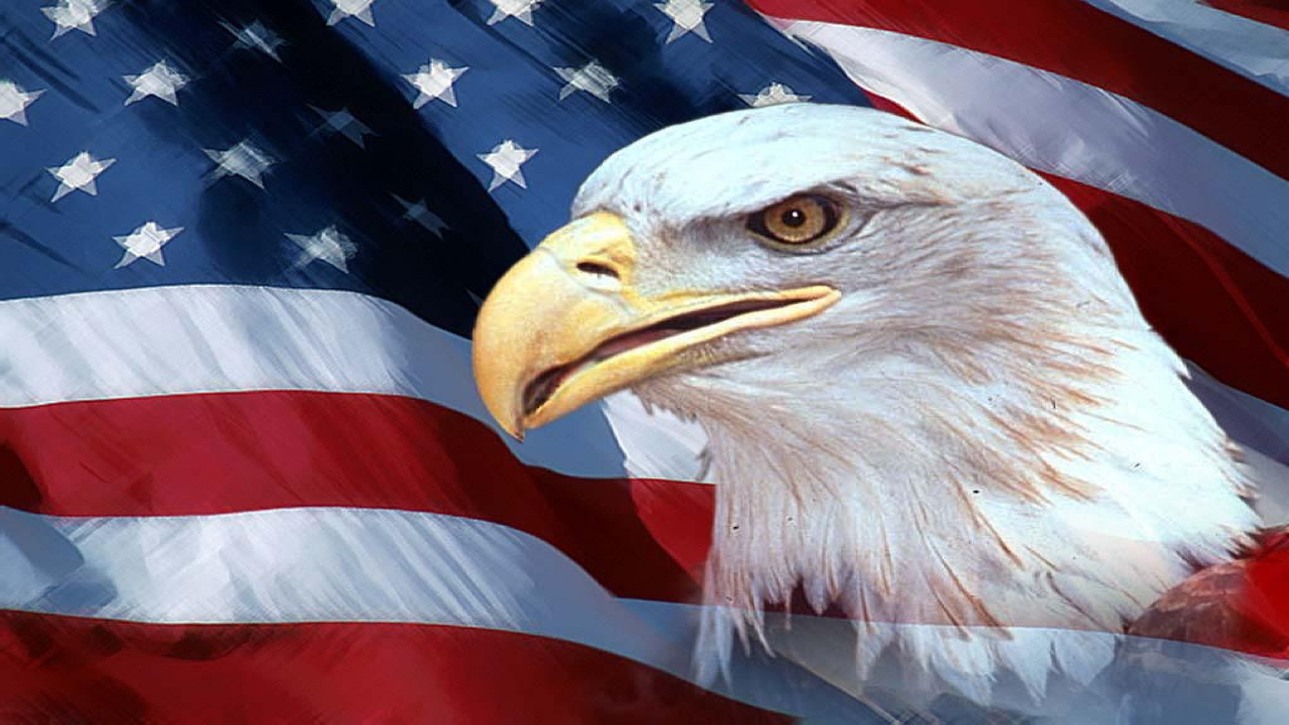 Images Of The American Flag With A Eagle Dowload