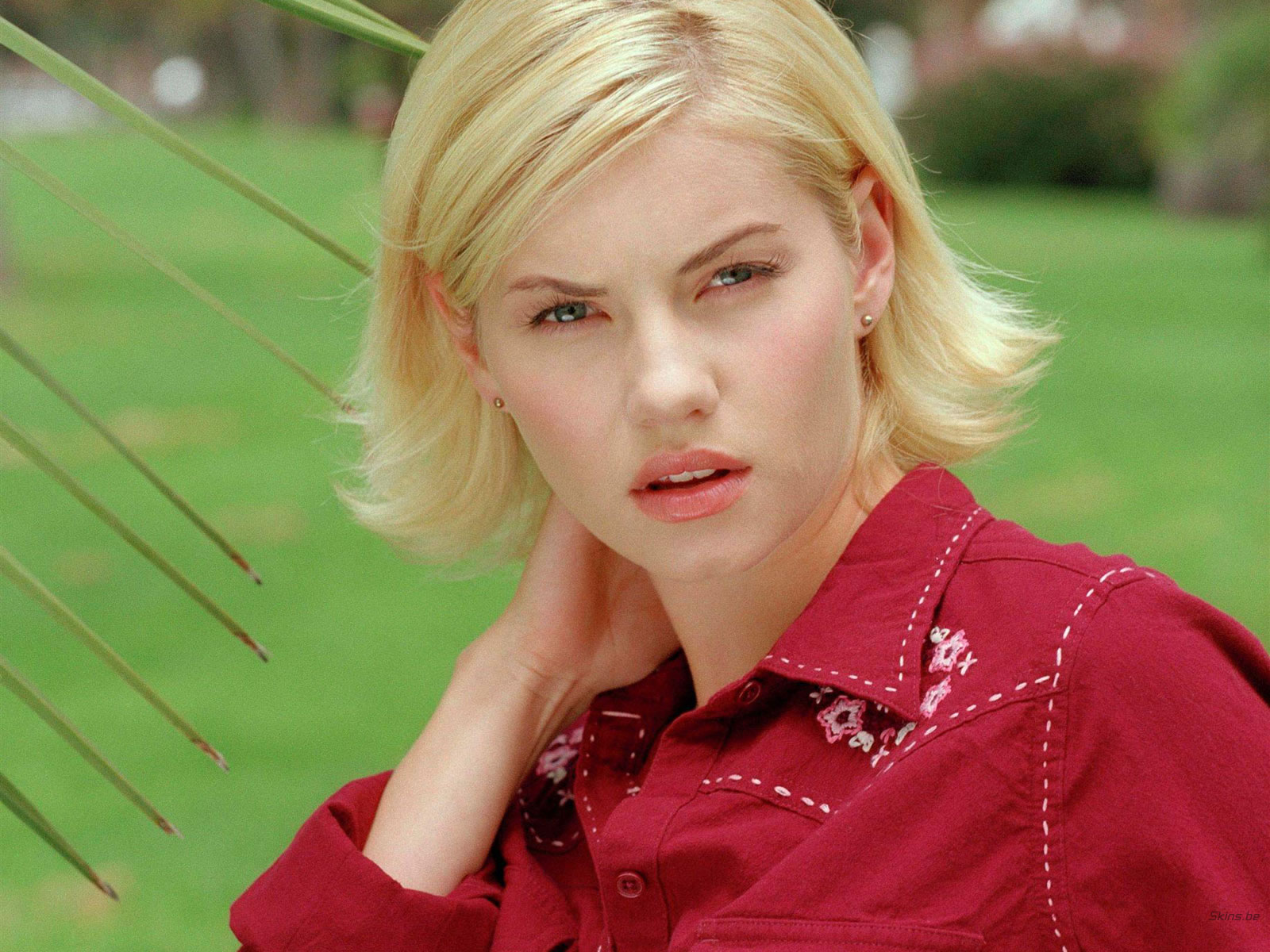 Charming Elisha Cuthbert Desktop Pictures Download