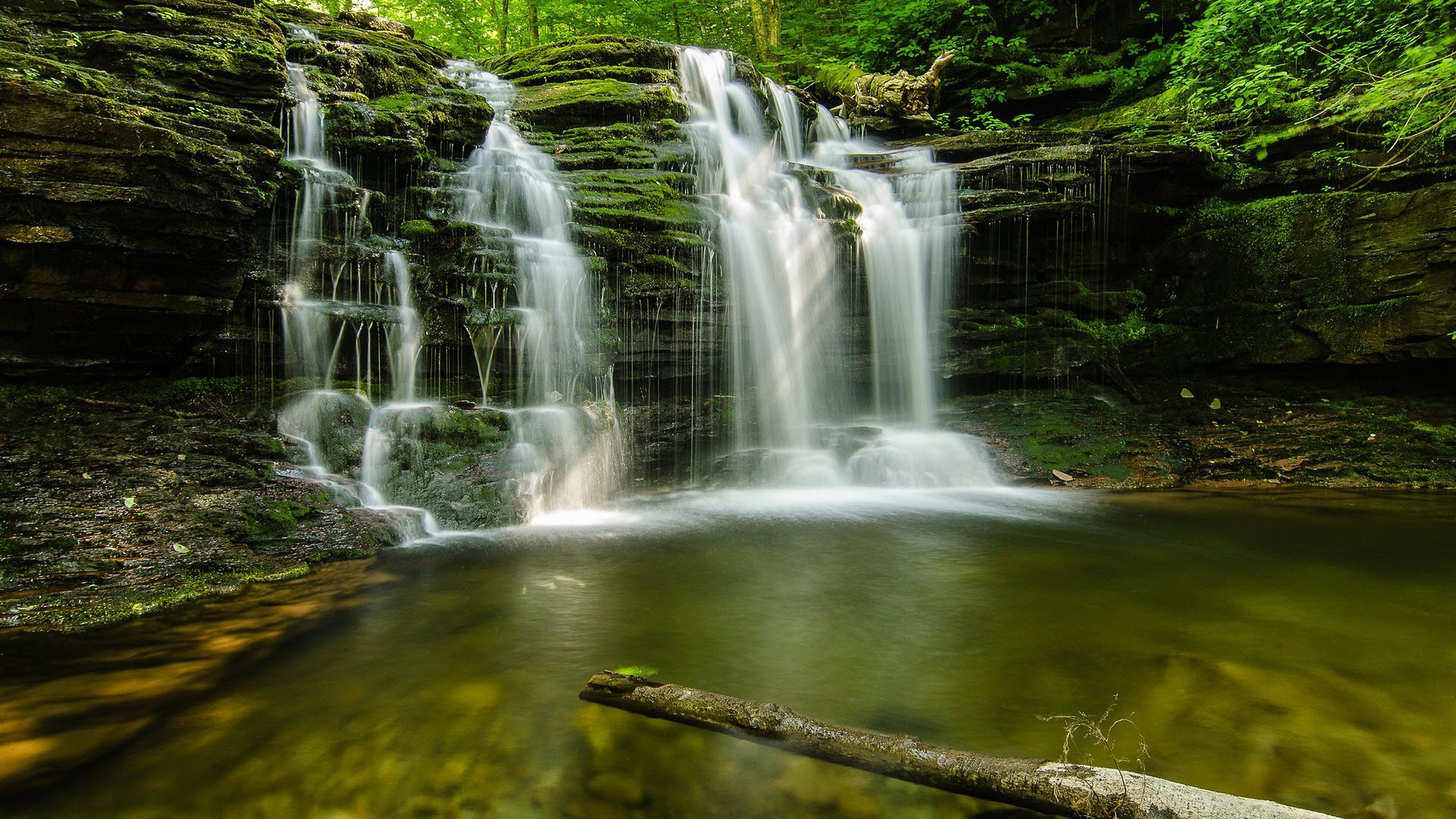 geen forest waterfalls desktop wallpaper images free download