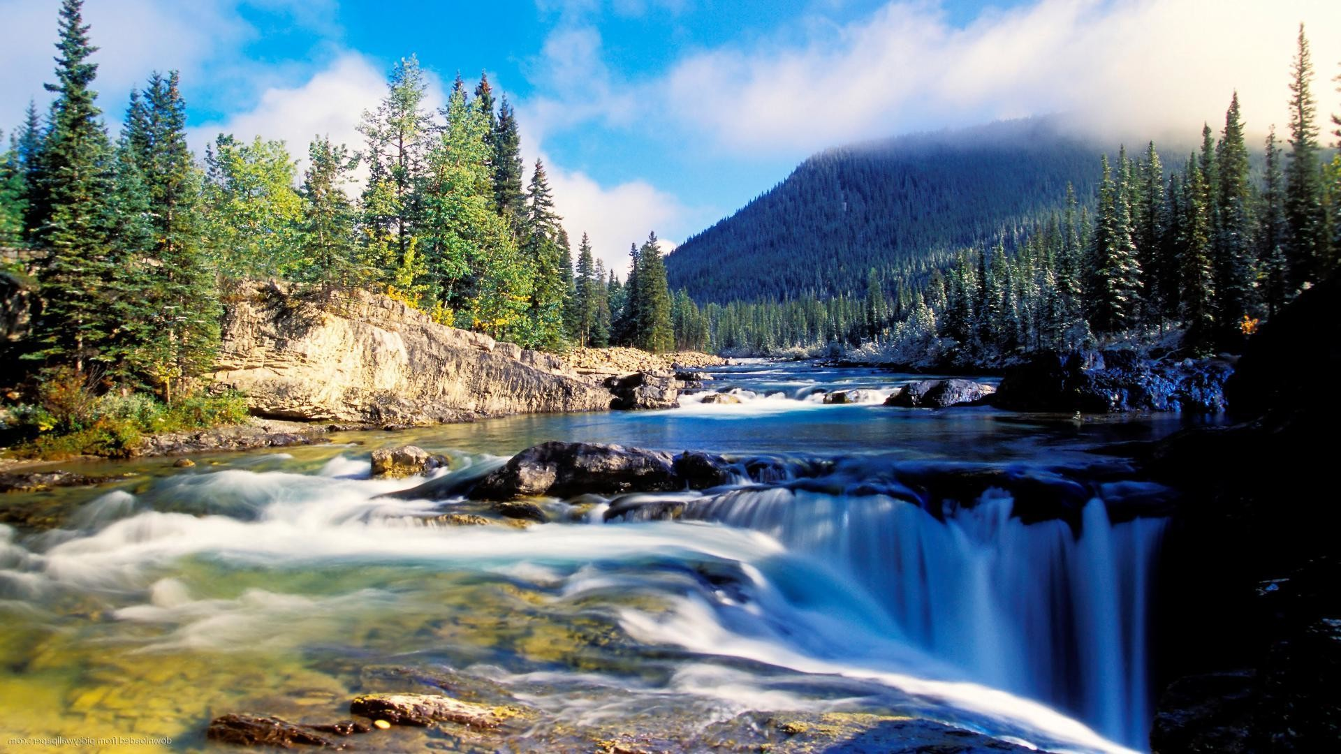 mountain river at summer forest landscape widescreen image