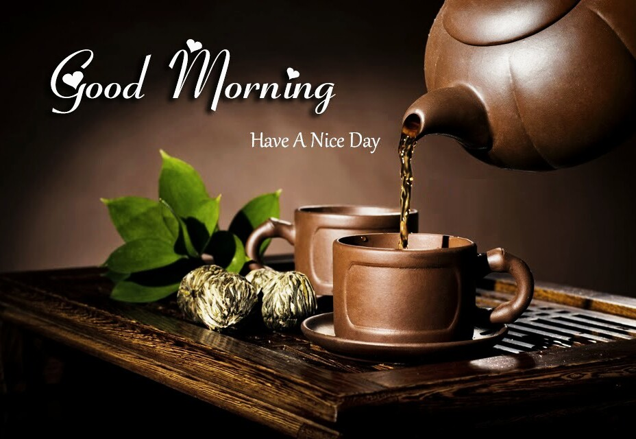 download good morning have a nice day hd pics