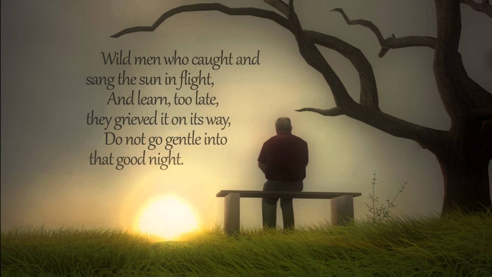 good night quotes hd whats app status download