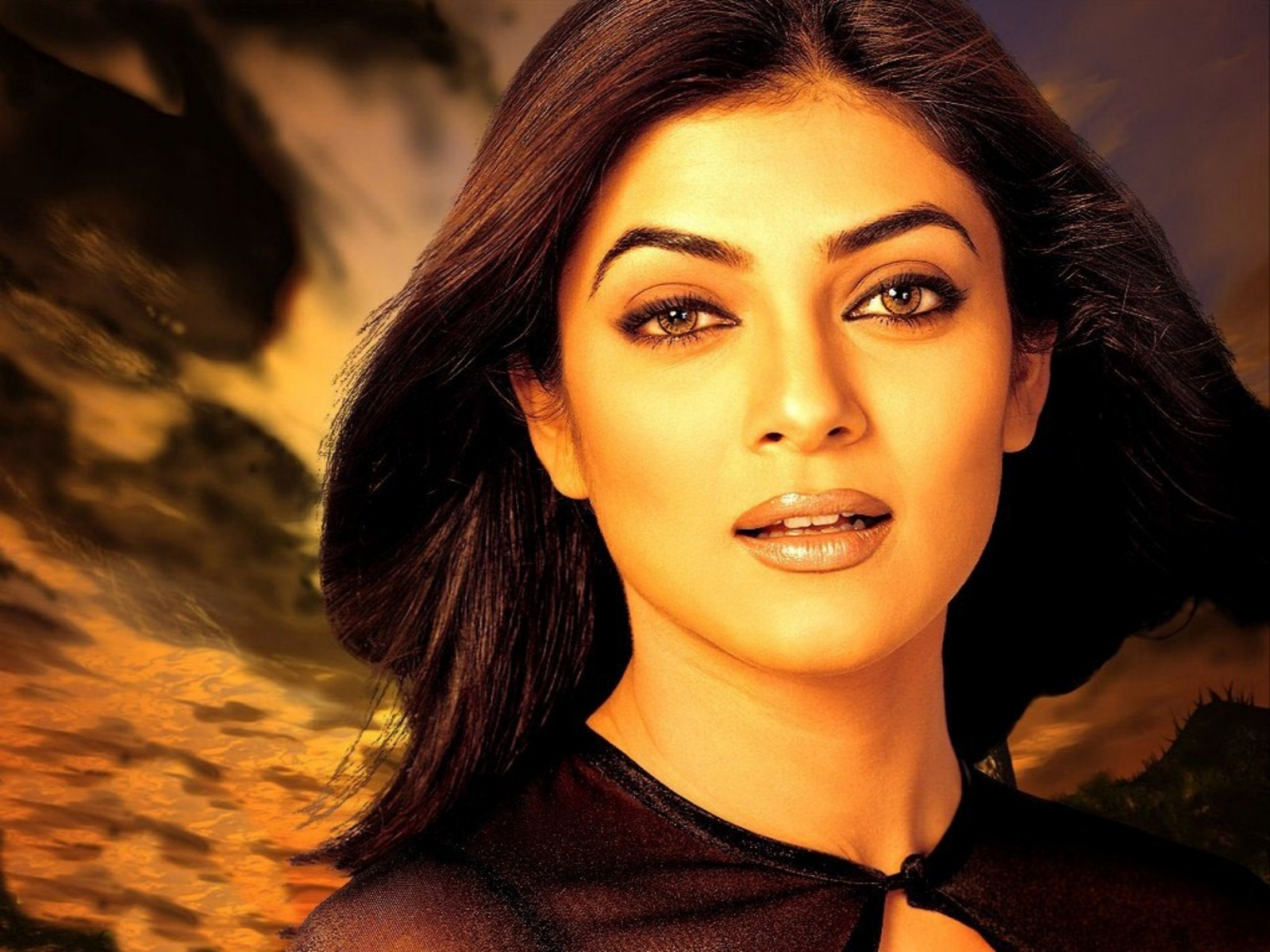 beautiful sushmita sen wallpaper images photos download