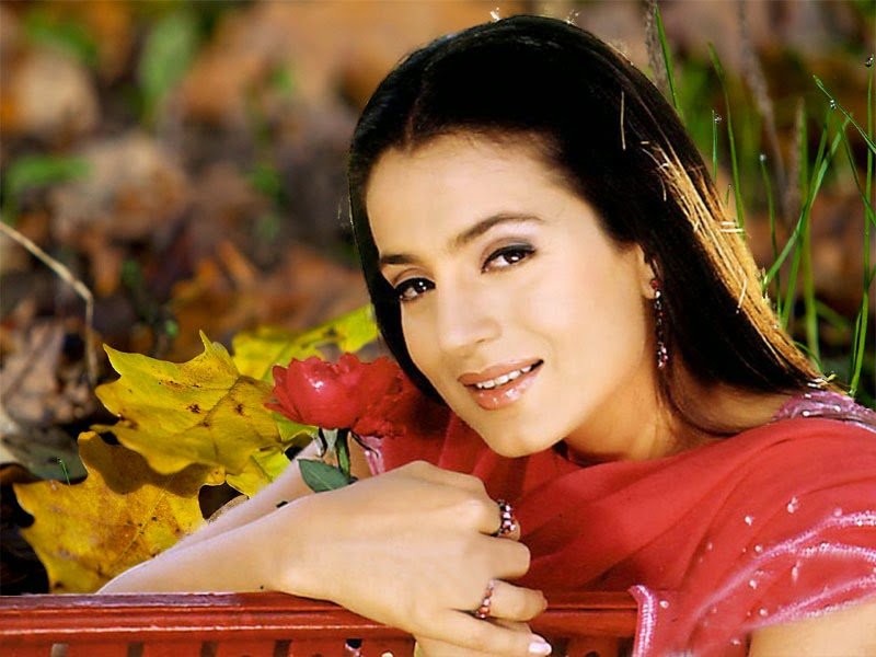bollywood heroine Amisha Patel Hd Wallpapers image