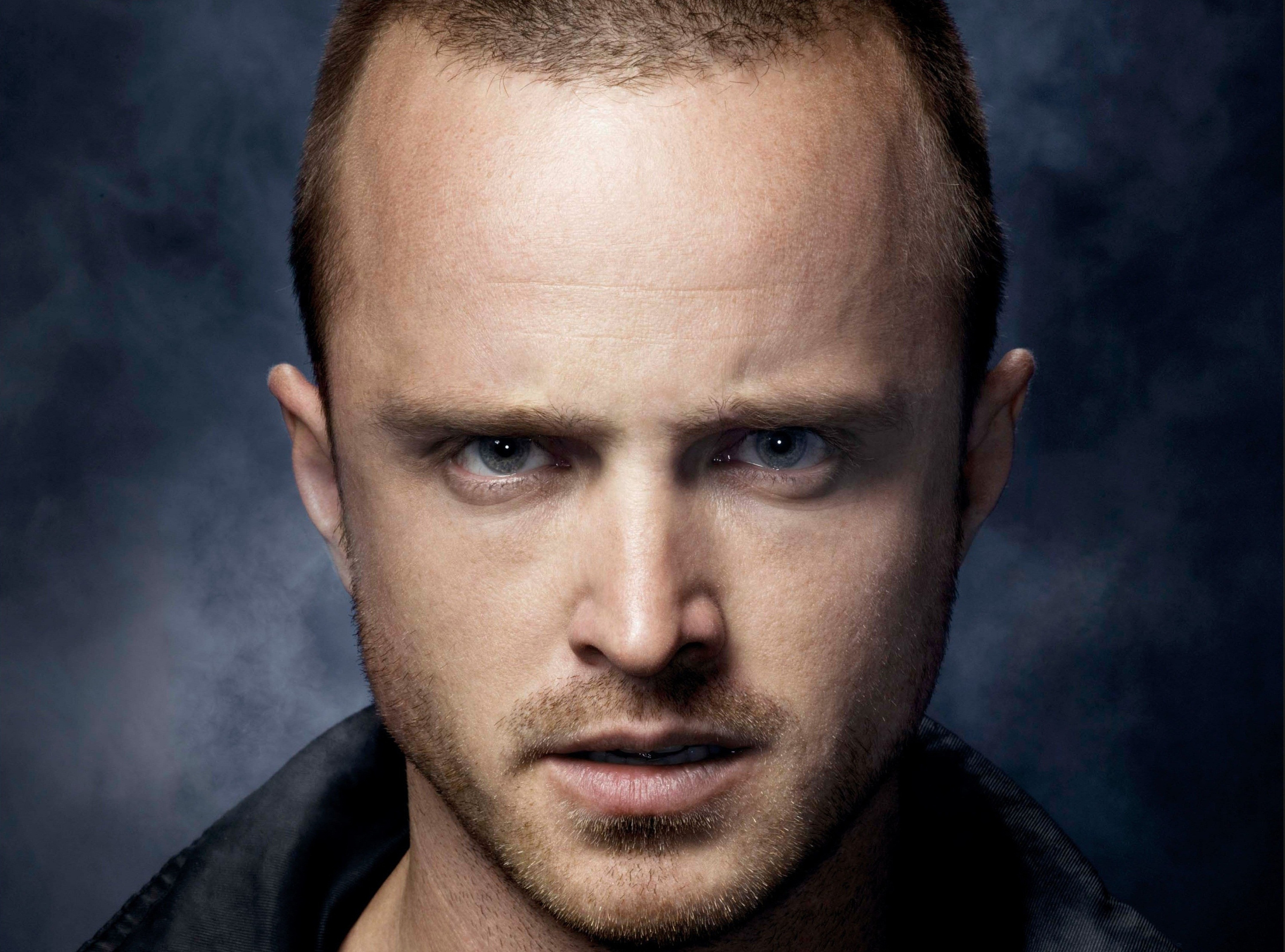 holywood aaron paul photo wallpapers free download