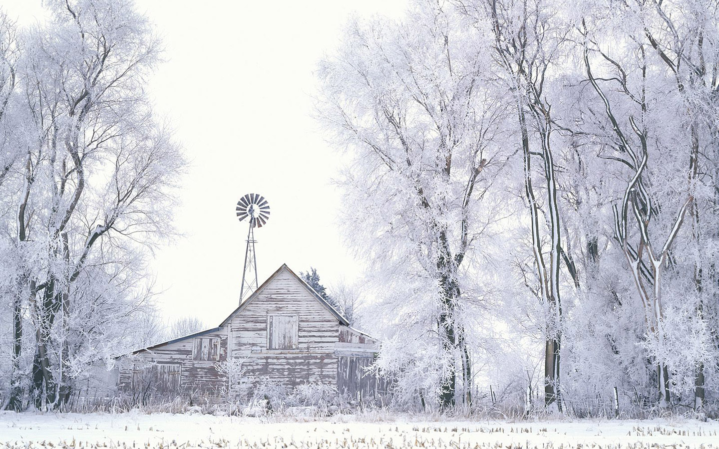 Pencil Drawing Winter Image Wallpapers Hd Free