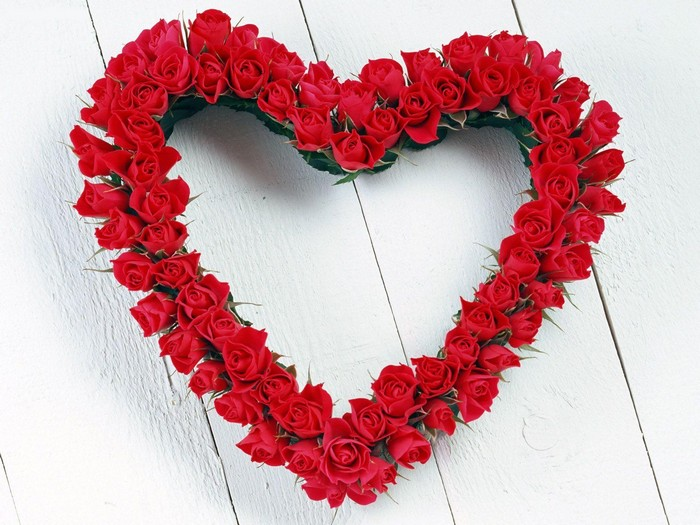 love flower heart pic
