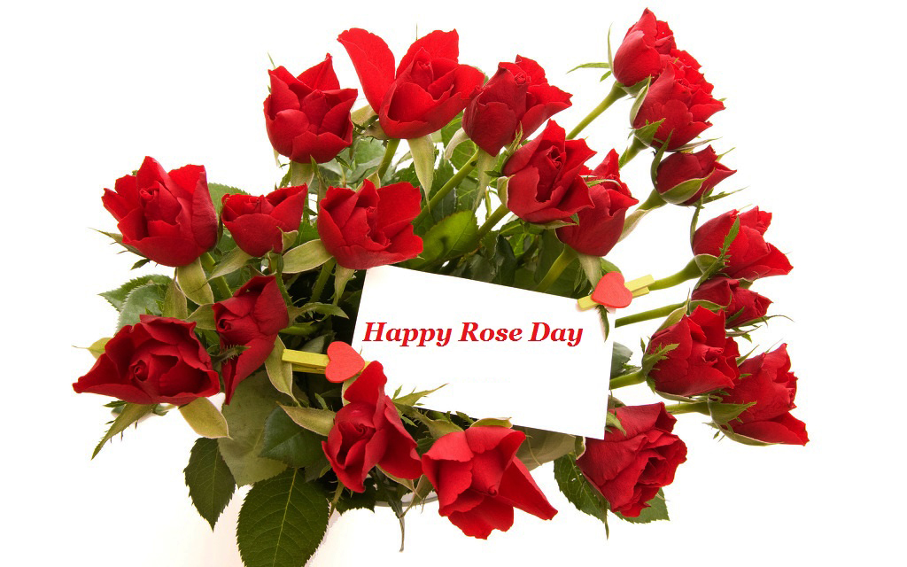 rose bouqet on happy rose day for love