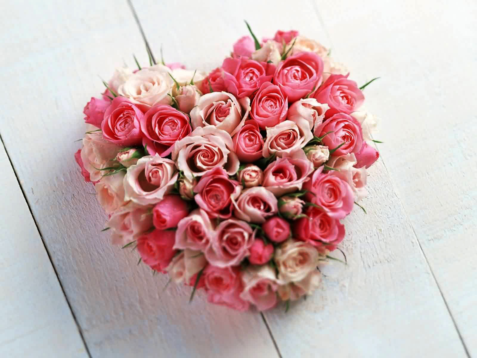 beautiful lovely pink and white roses boquet for you my lovely sweetheart on this valentine