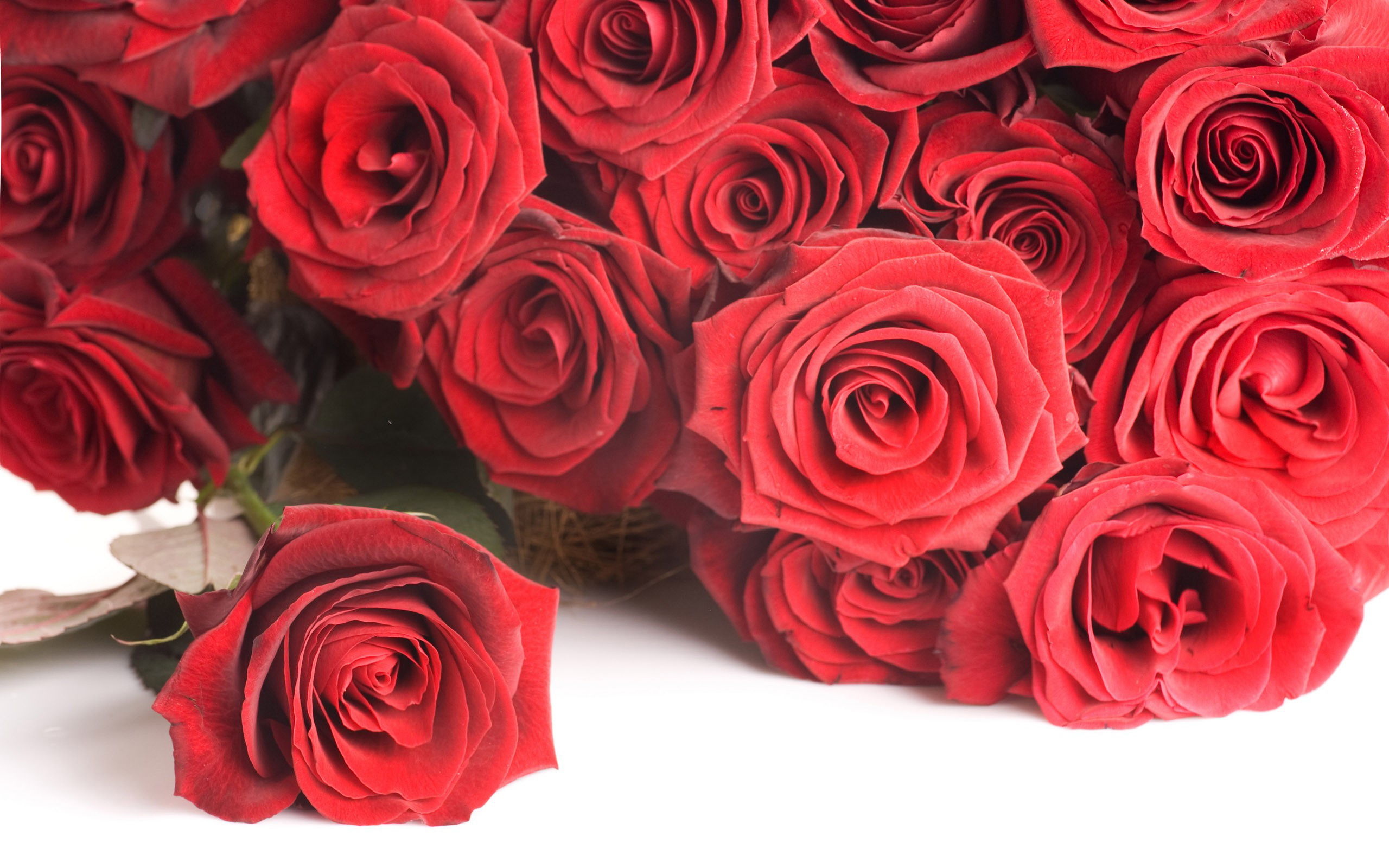 red rose bouquet wallpaper for love