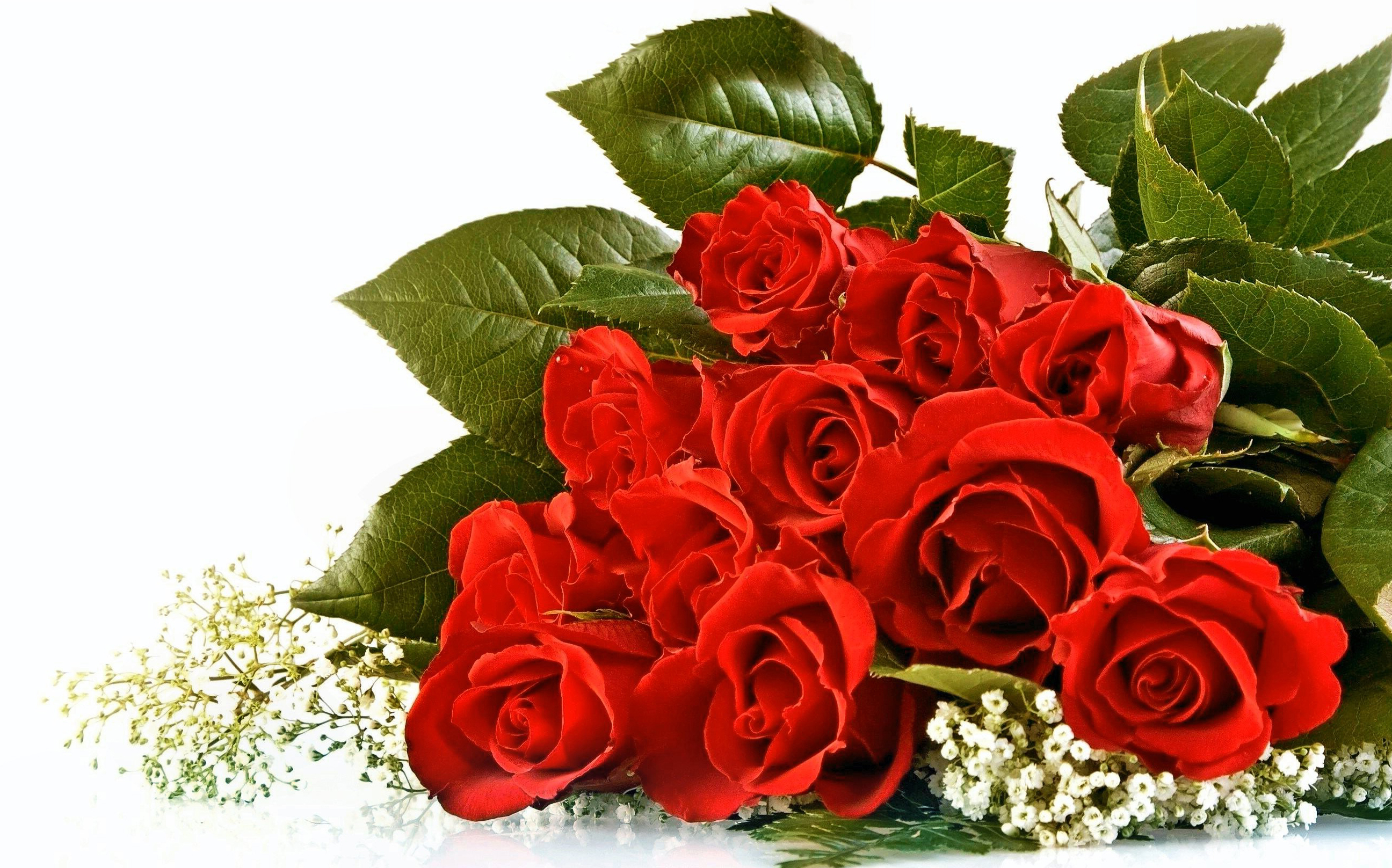 red rose bouquet wallpaper with love