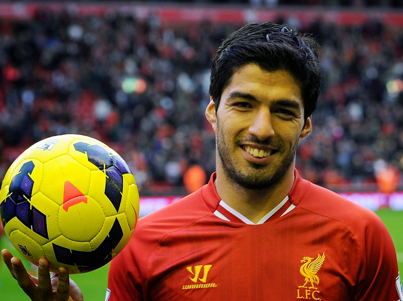 Free Luis Suarez Football Soccer Player Hd Background Mobile Desktop Download Images