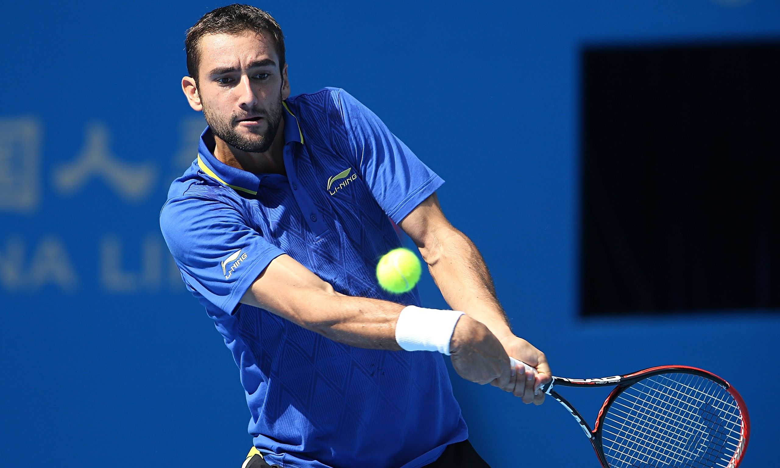 marin cilic lovely short hd free mobile background download images