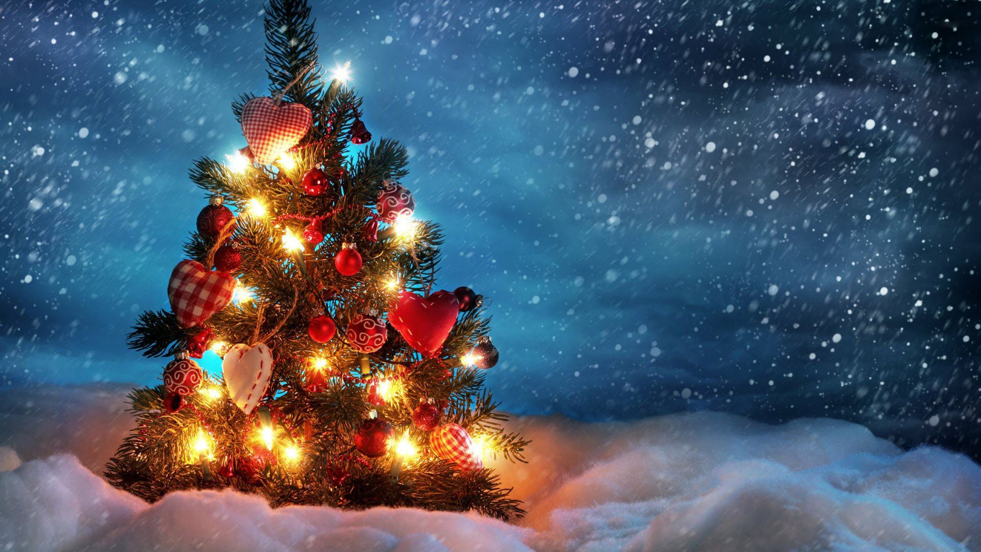 awesome christmas tree hd photos download