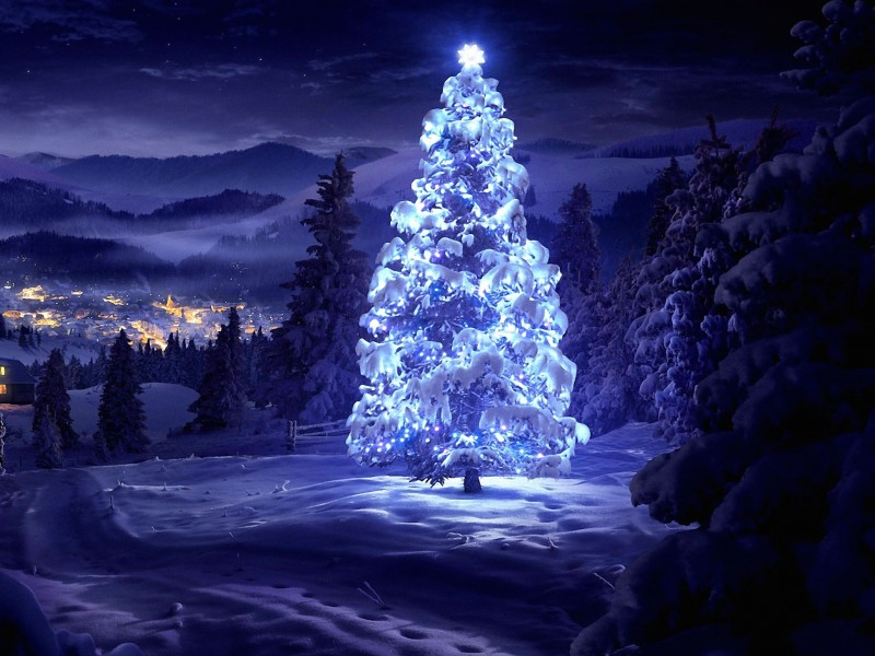 Christmas Tree Free Hd Wallpaper