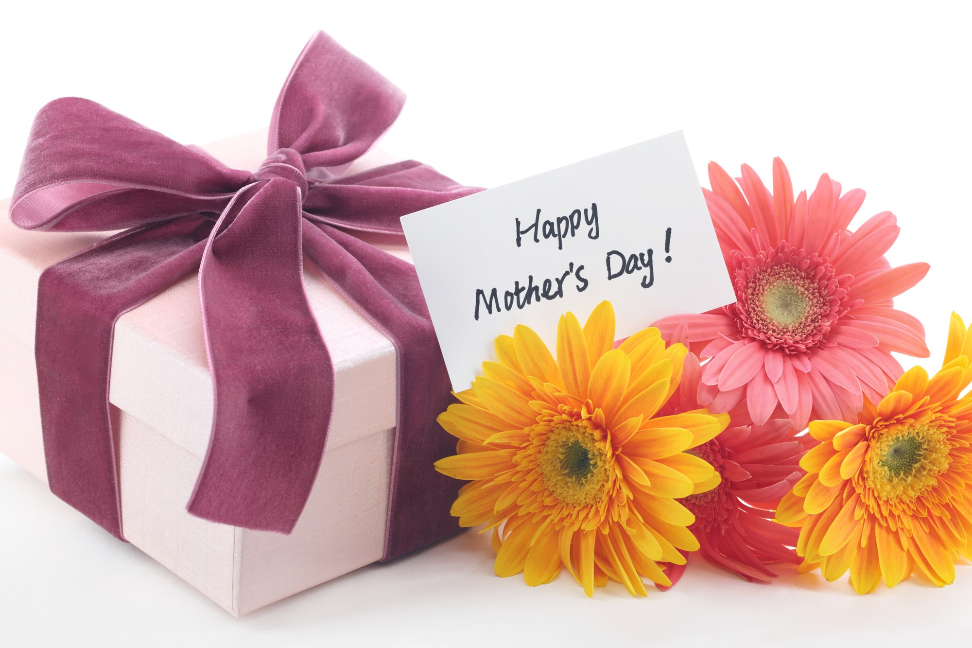 Mothers Day Special Greetings Flower Gifts Download