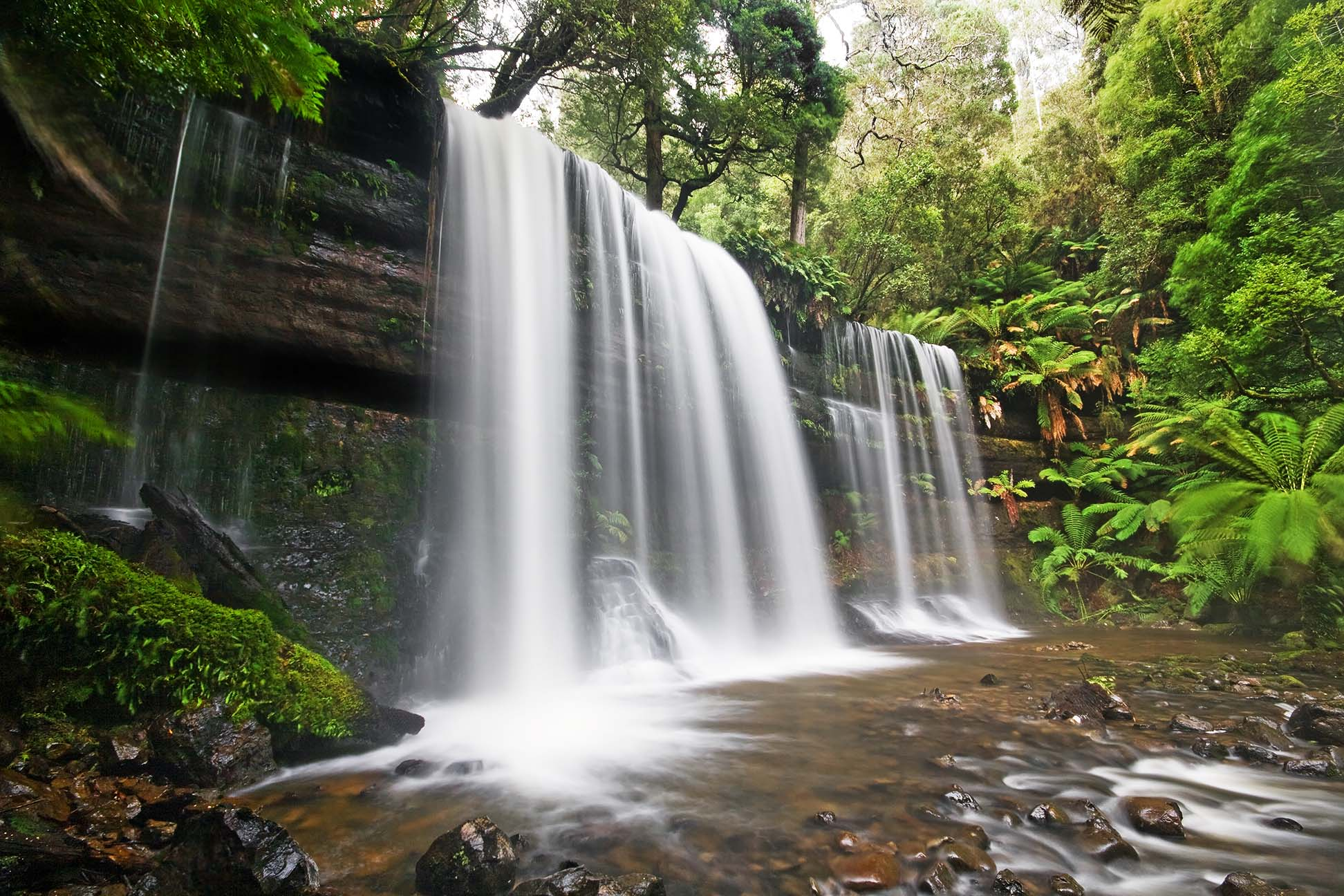 russell falls mount field national prk tasmania pictures free