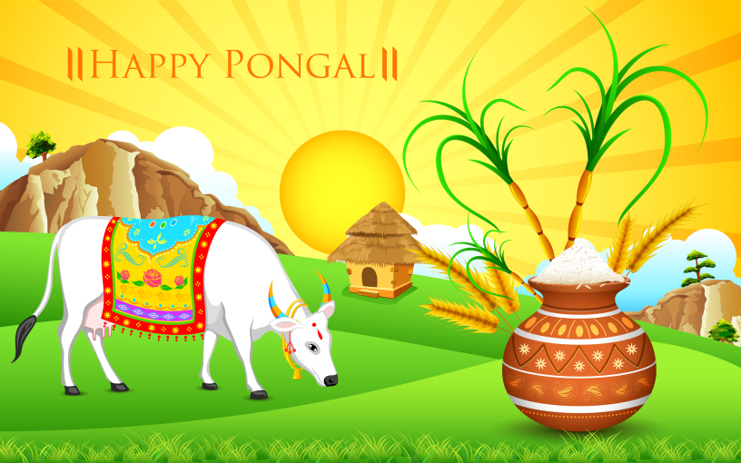 maatu pongal wishes celebrations fb cover pages image download